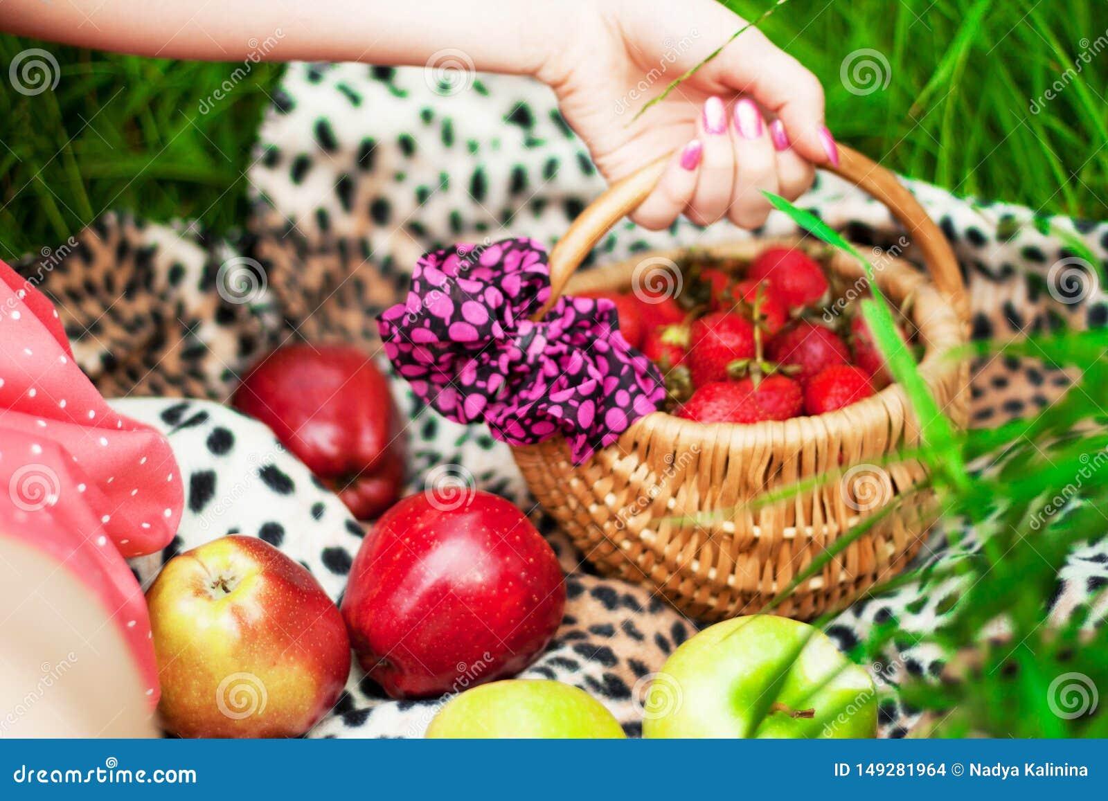 De zomer heldere sappige vruchten van de tuin
