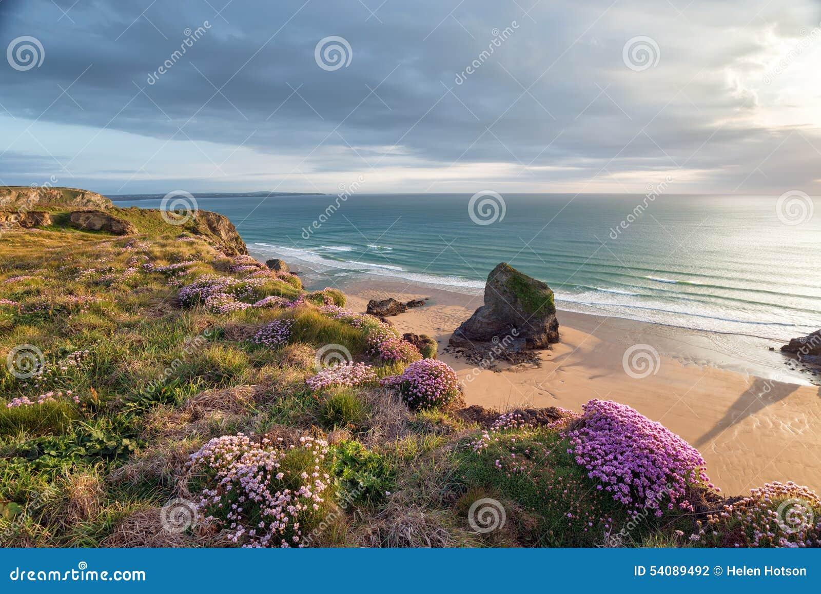De zomer op de Kust Van Cornwall