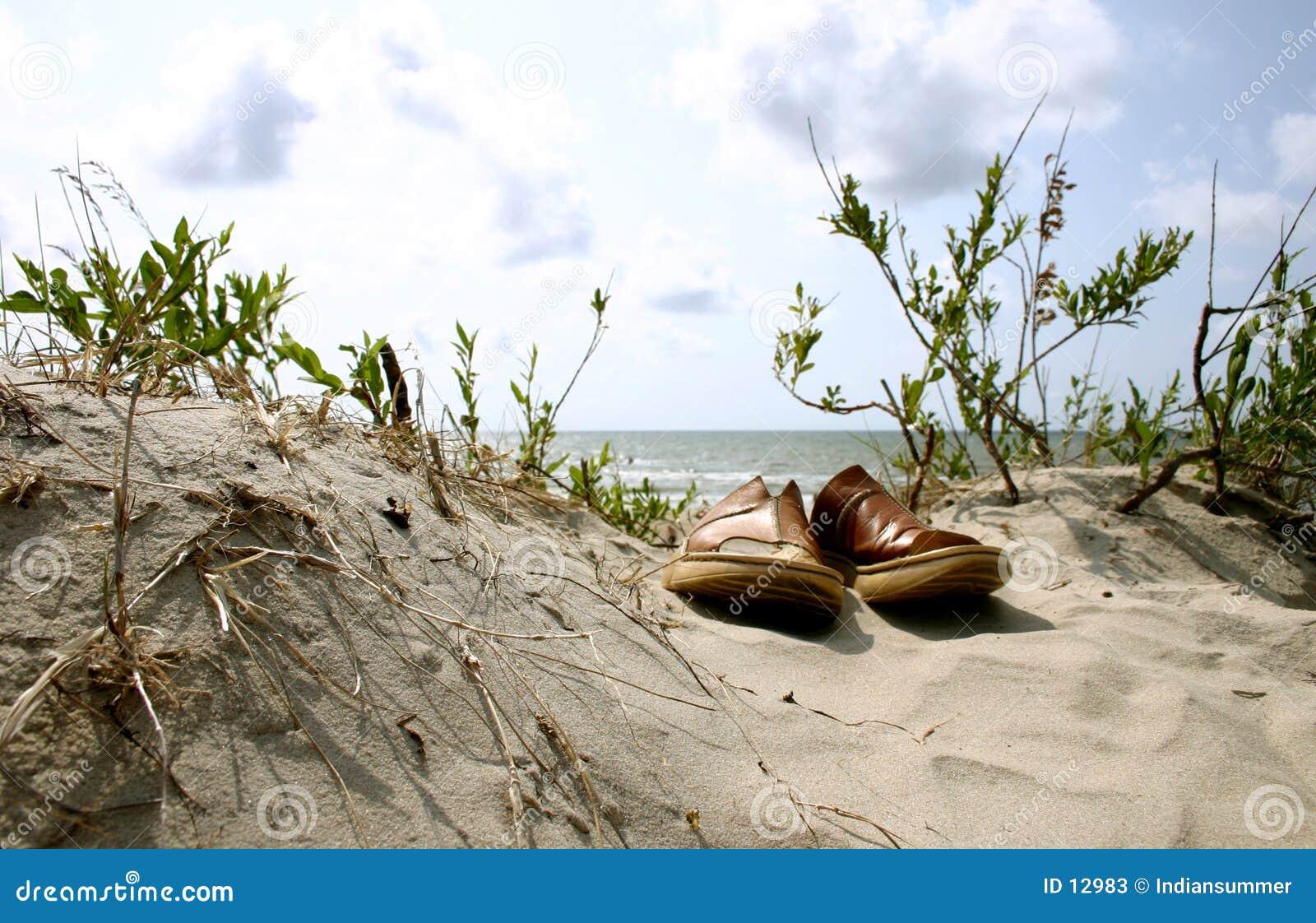 De zomer. Strand. Vakantie