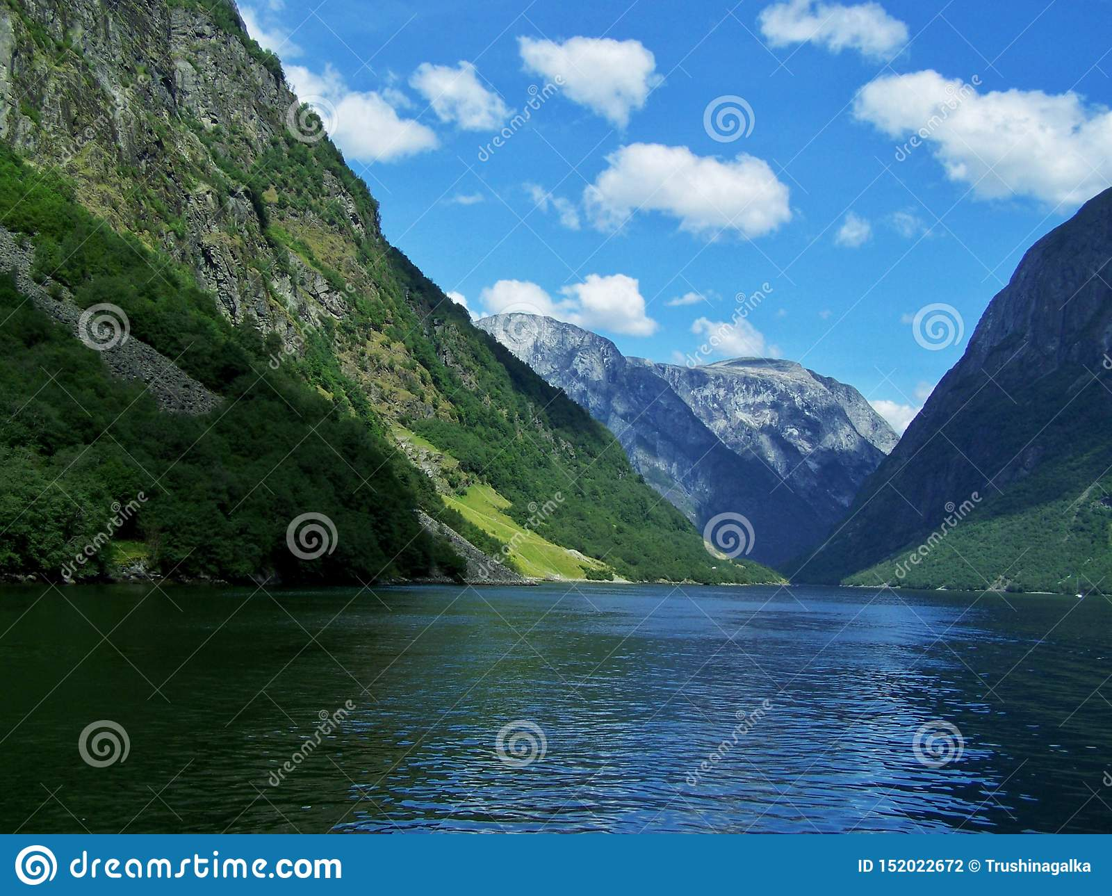 De zomer van aardnoorwegen Water, bosfjord op een Zonnige dag