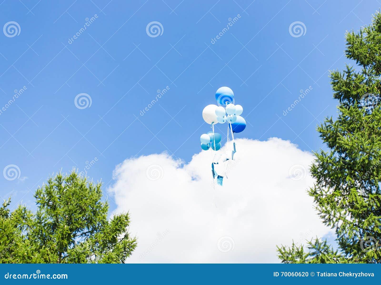 De zomerballons het vliegen