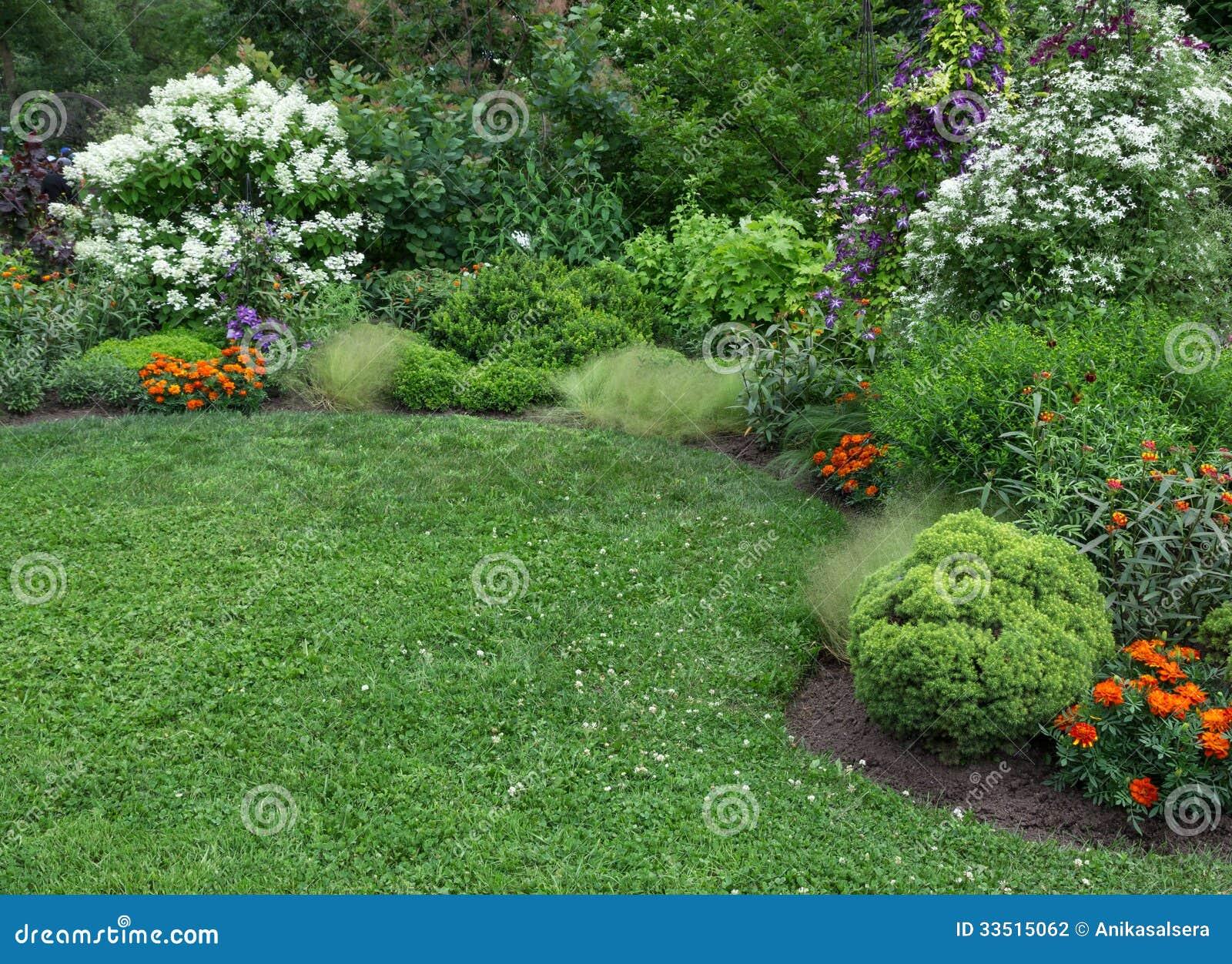 De zomertuin met groen gazon
