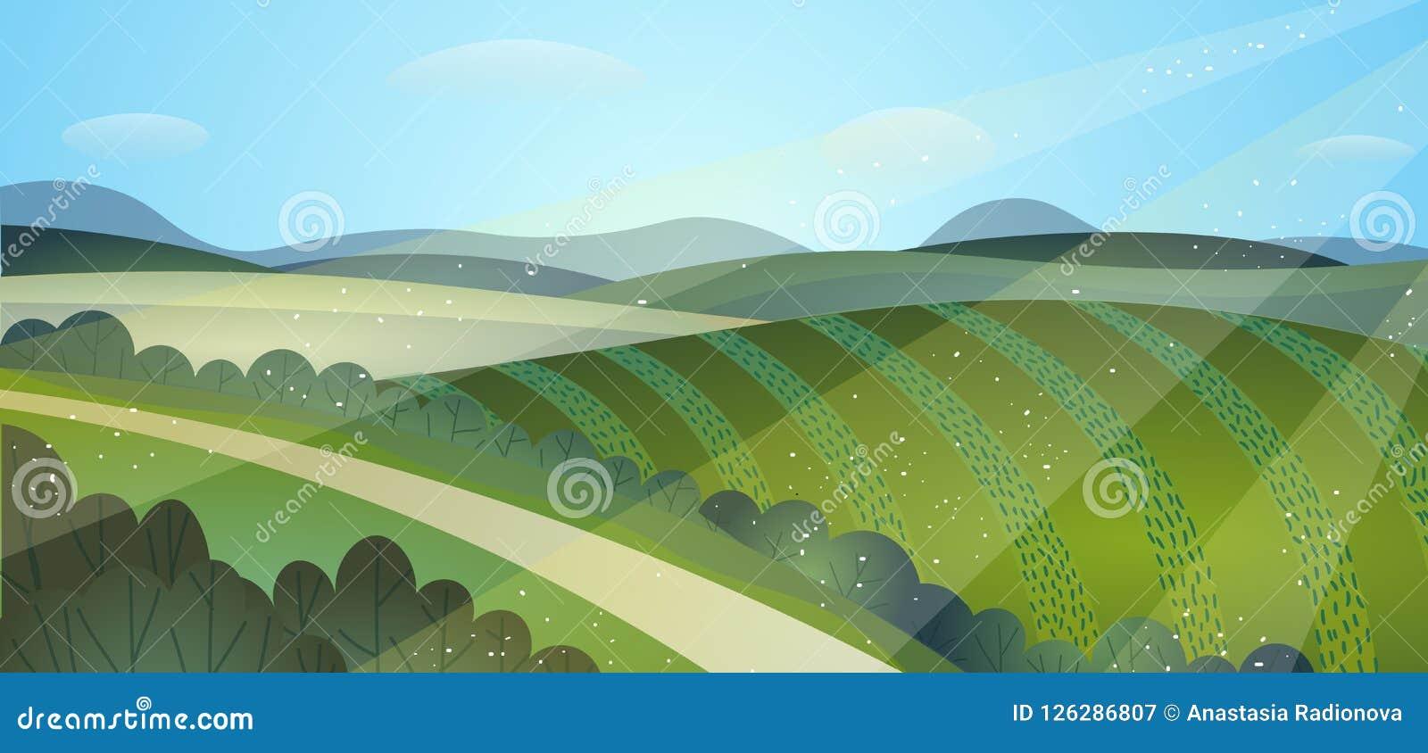 De zonnige groene gebieden van het de zomerlandschap Oogstheuvels