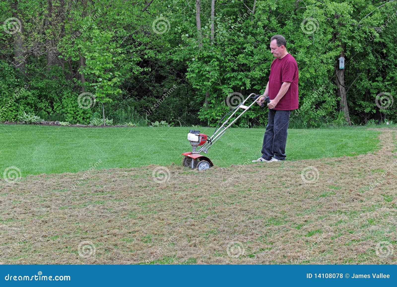De Zorg van het gazon - Gras Dethatching