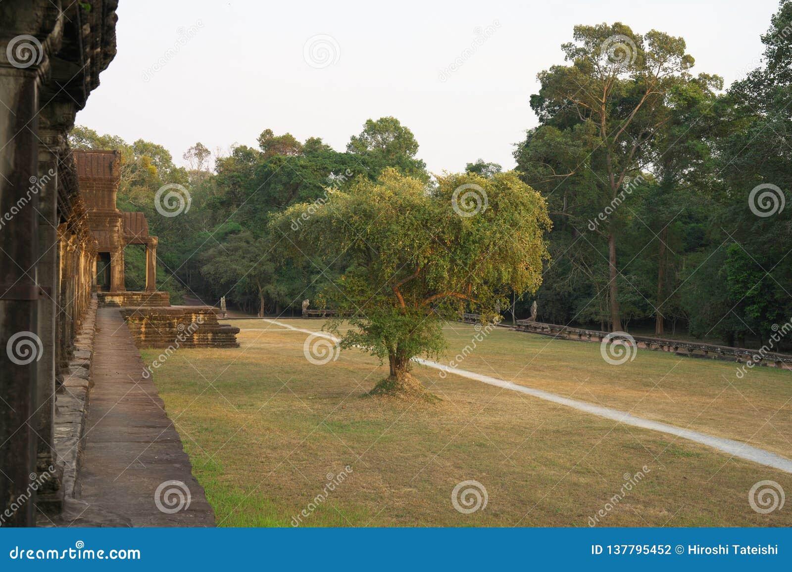 De zuidengalerij van de eerste gang van Angkor Wat in Siem oogst, Kambodja