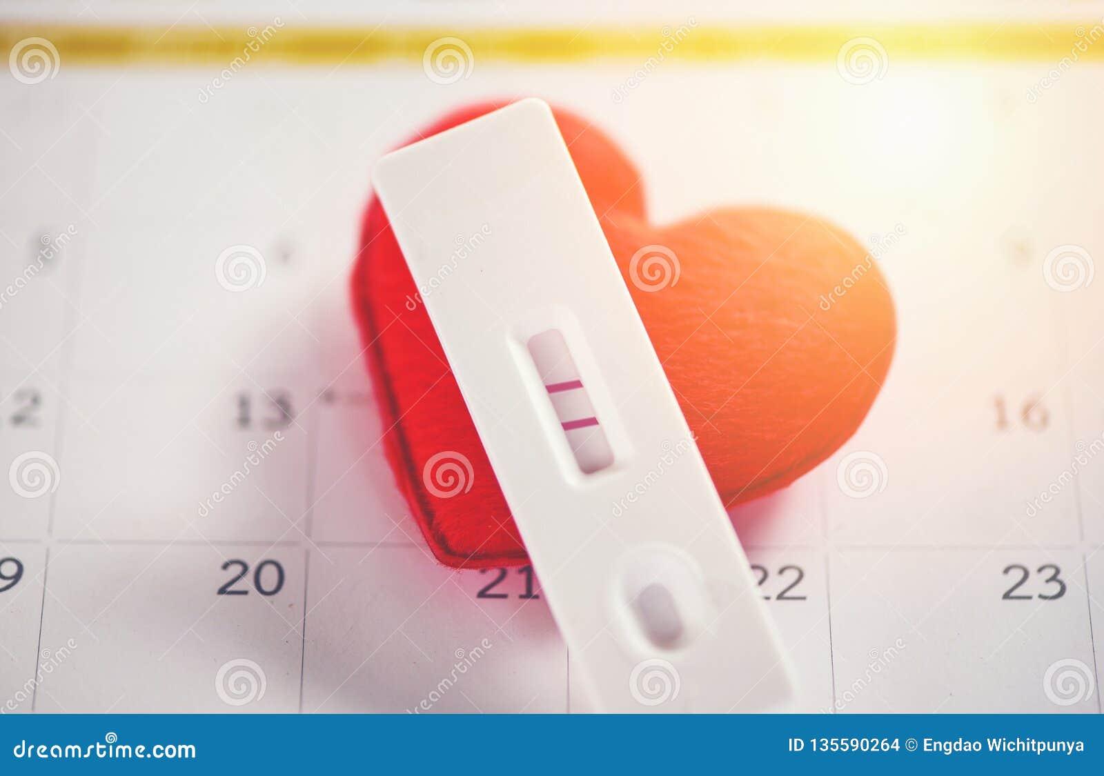 De zwangerschap test Zwanger positief resultaat twee van het vrouwenconcept lijnen plannend een babymoederschap en een gezondheid