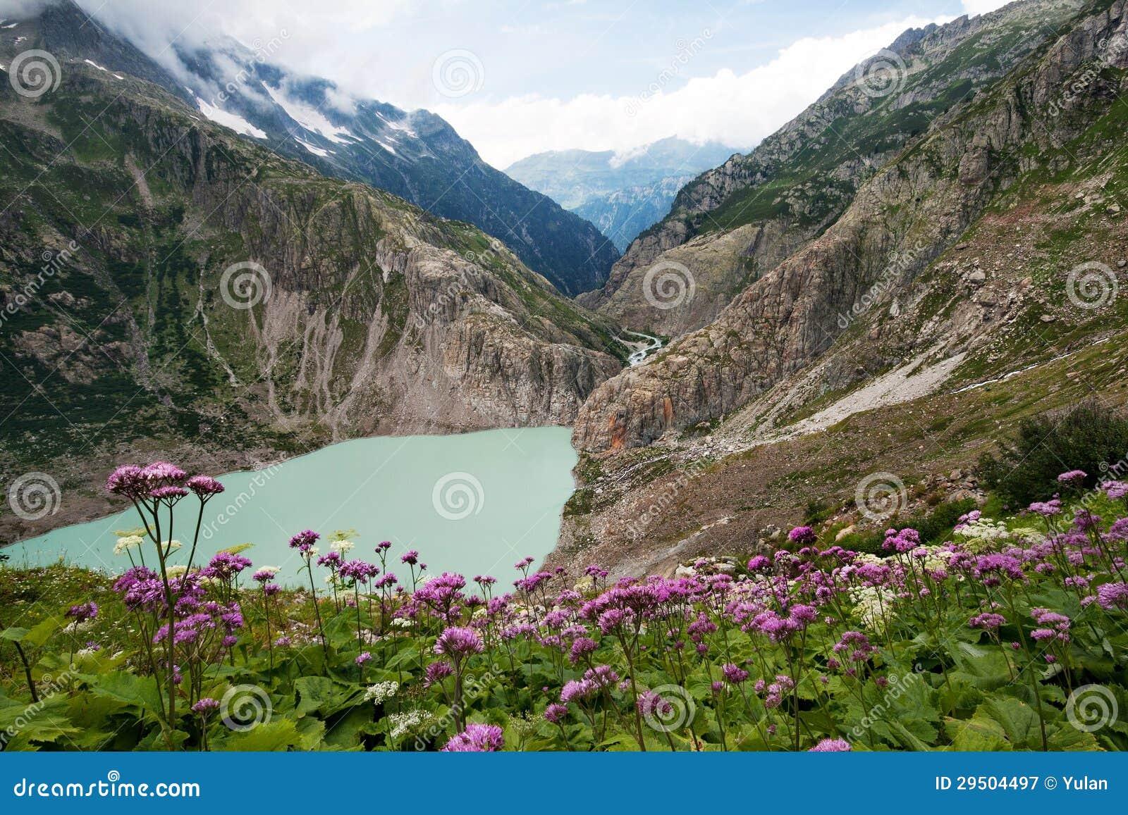 De Zwitserse vallei van Alpen