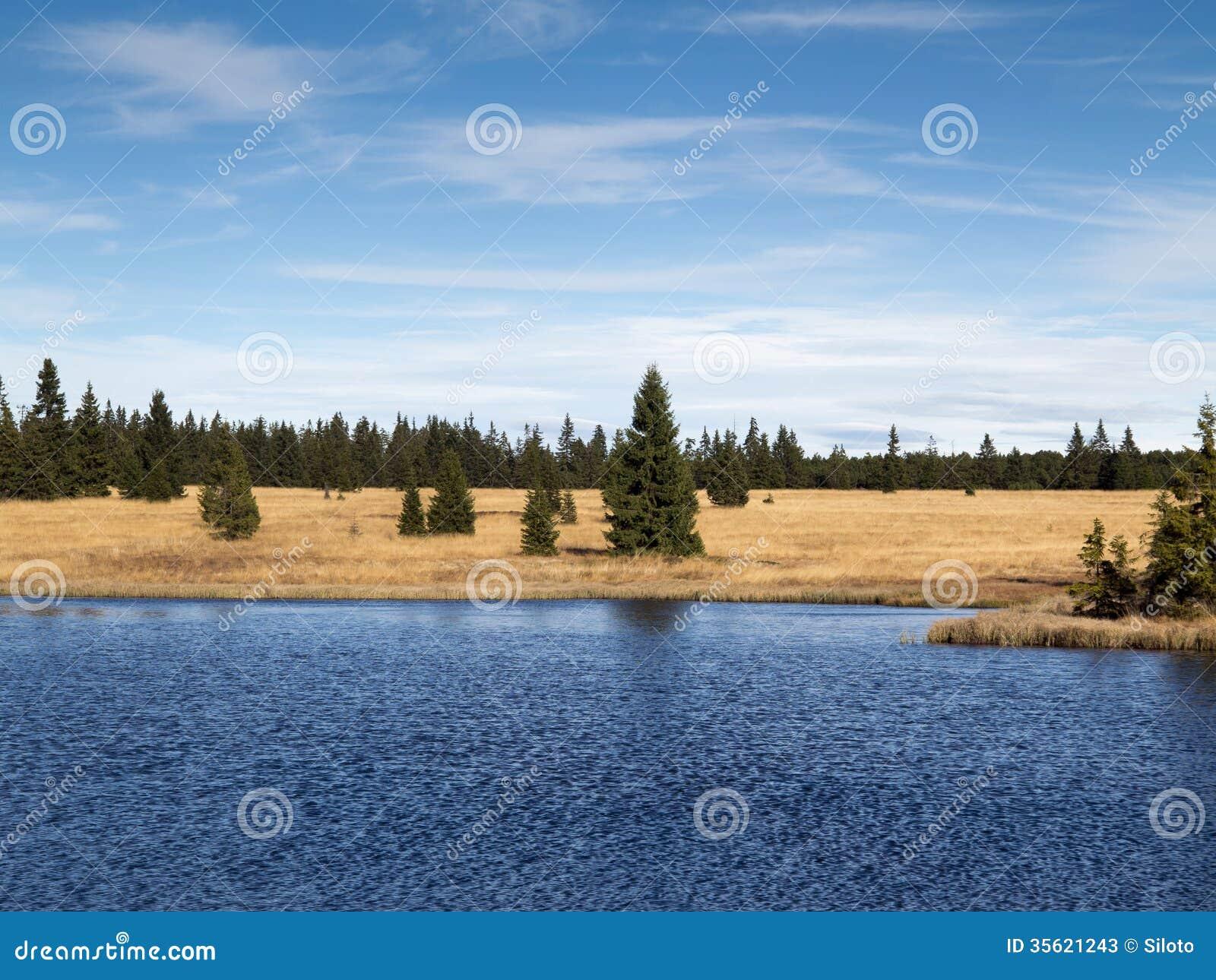 Black Pond Woods Nature Area