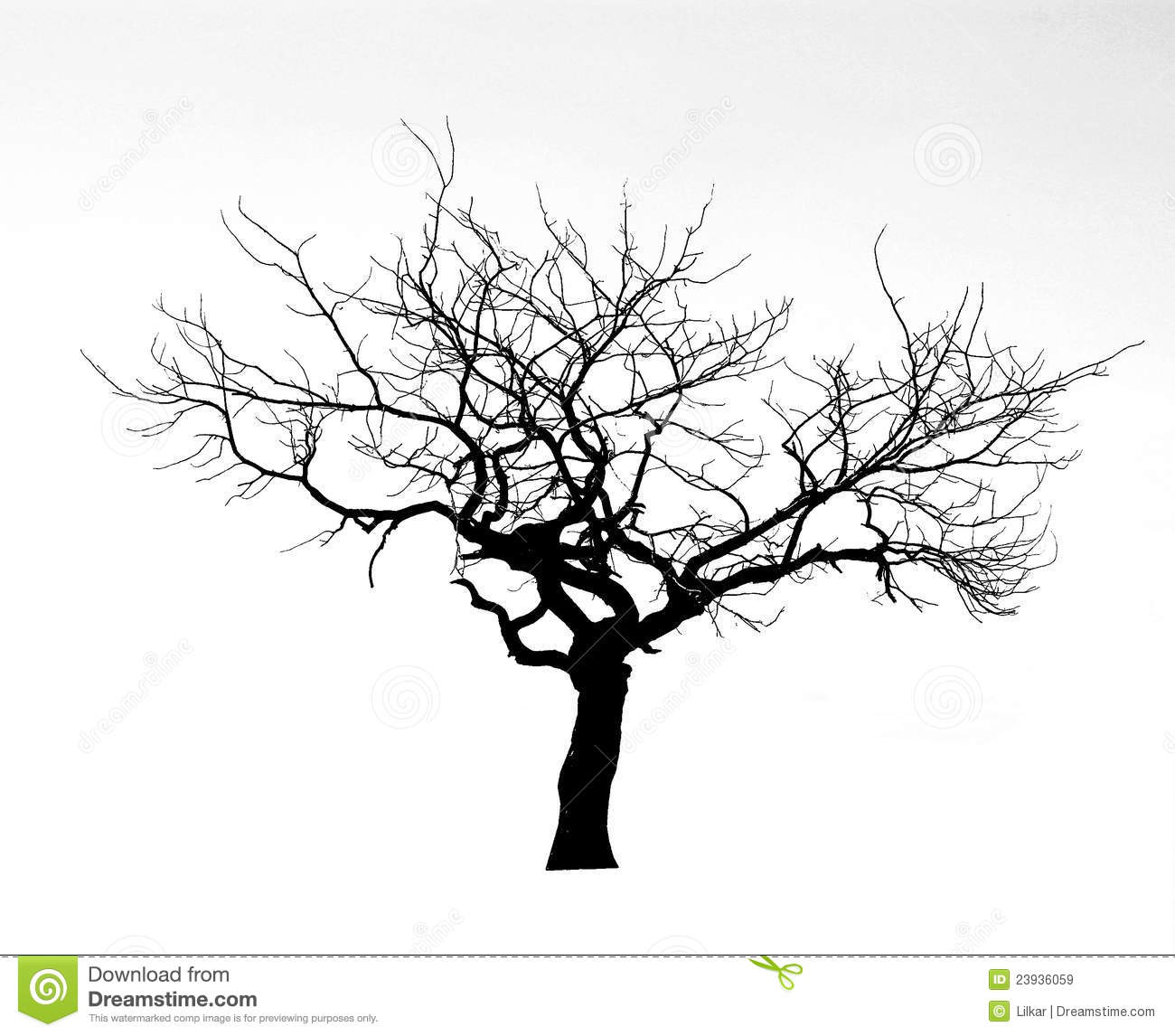 Dead Tree Royalty Free Stock Images - Image: 23936059