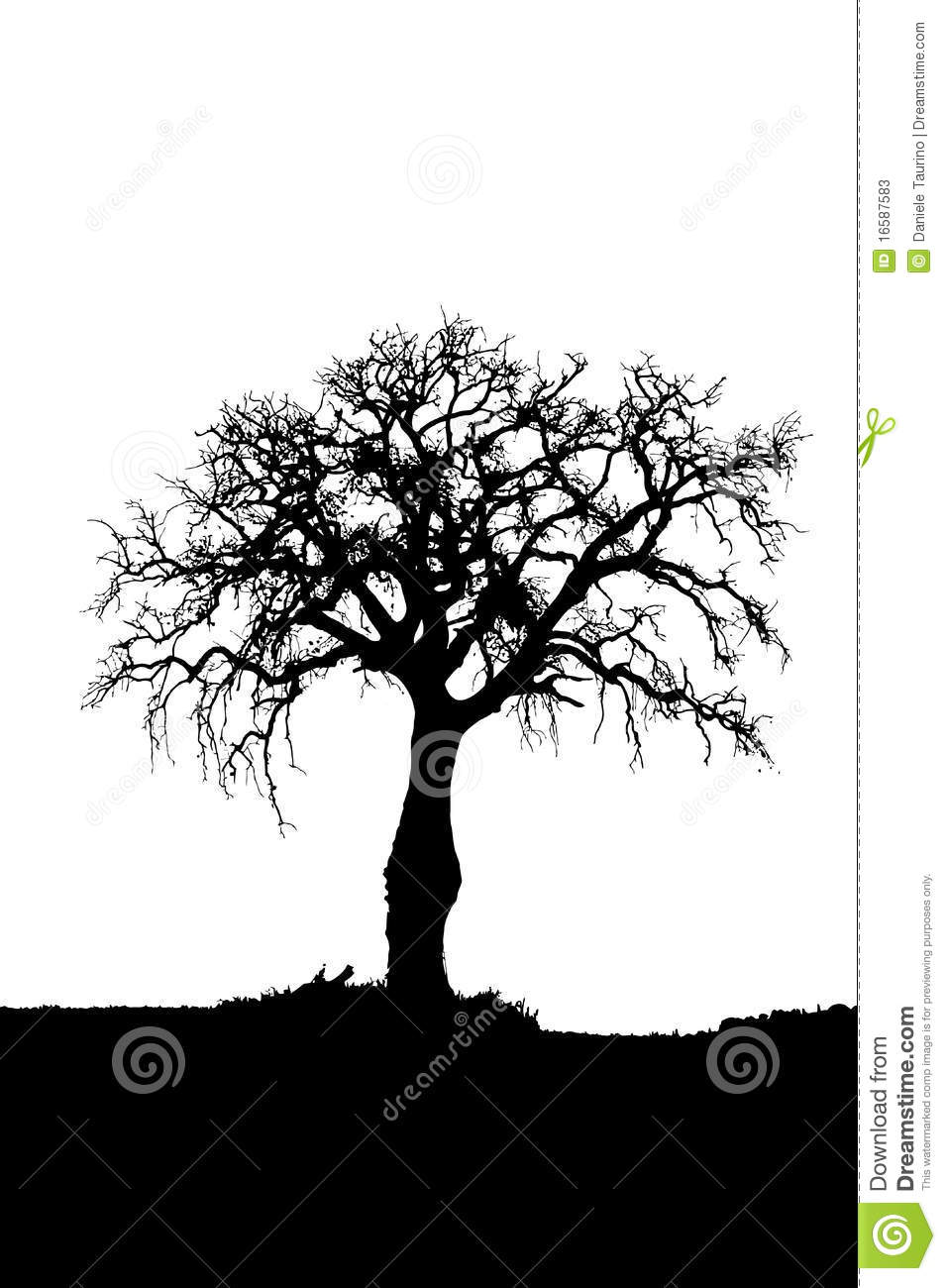 Nature Images 2mb: Dead Tree Silhouette Stock Vector. Image Of Nature, Bald