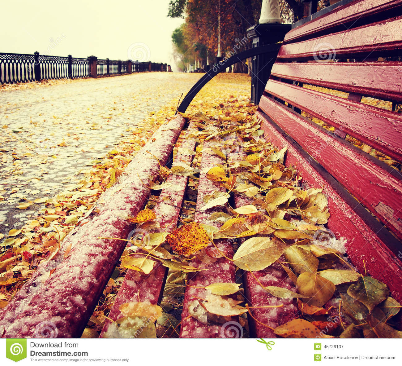 autumn leaves on bench - photo #11