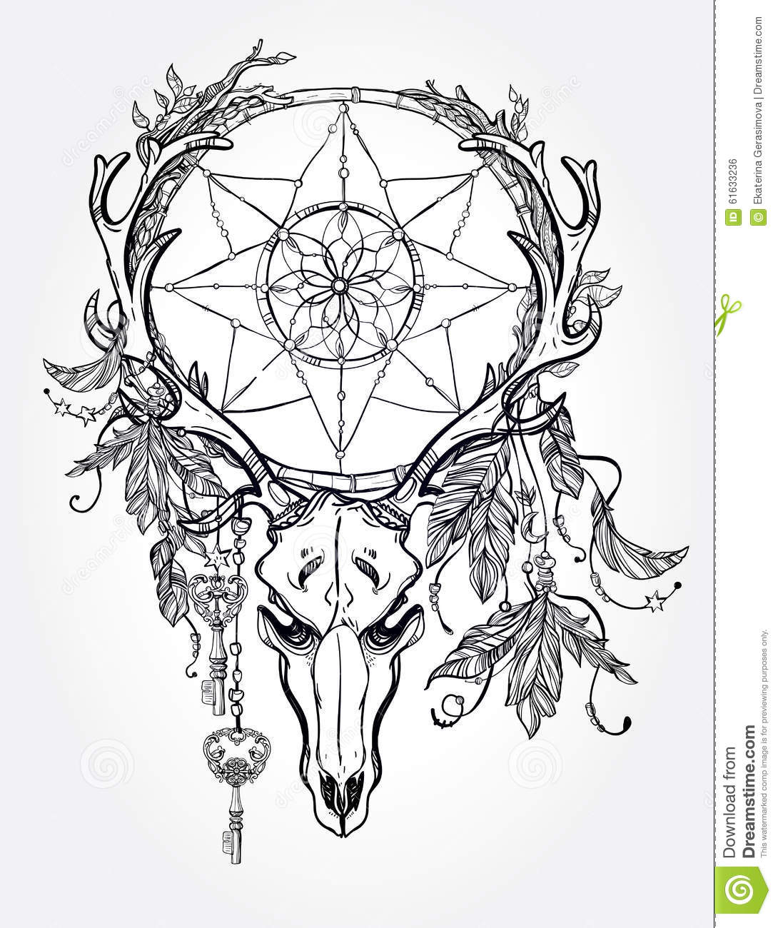 Dear Skull And Dreamcatcher Lineart Stock Vector Image