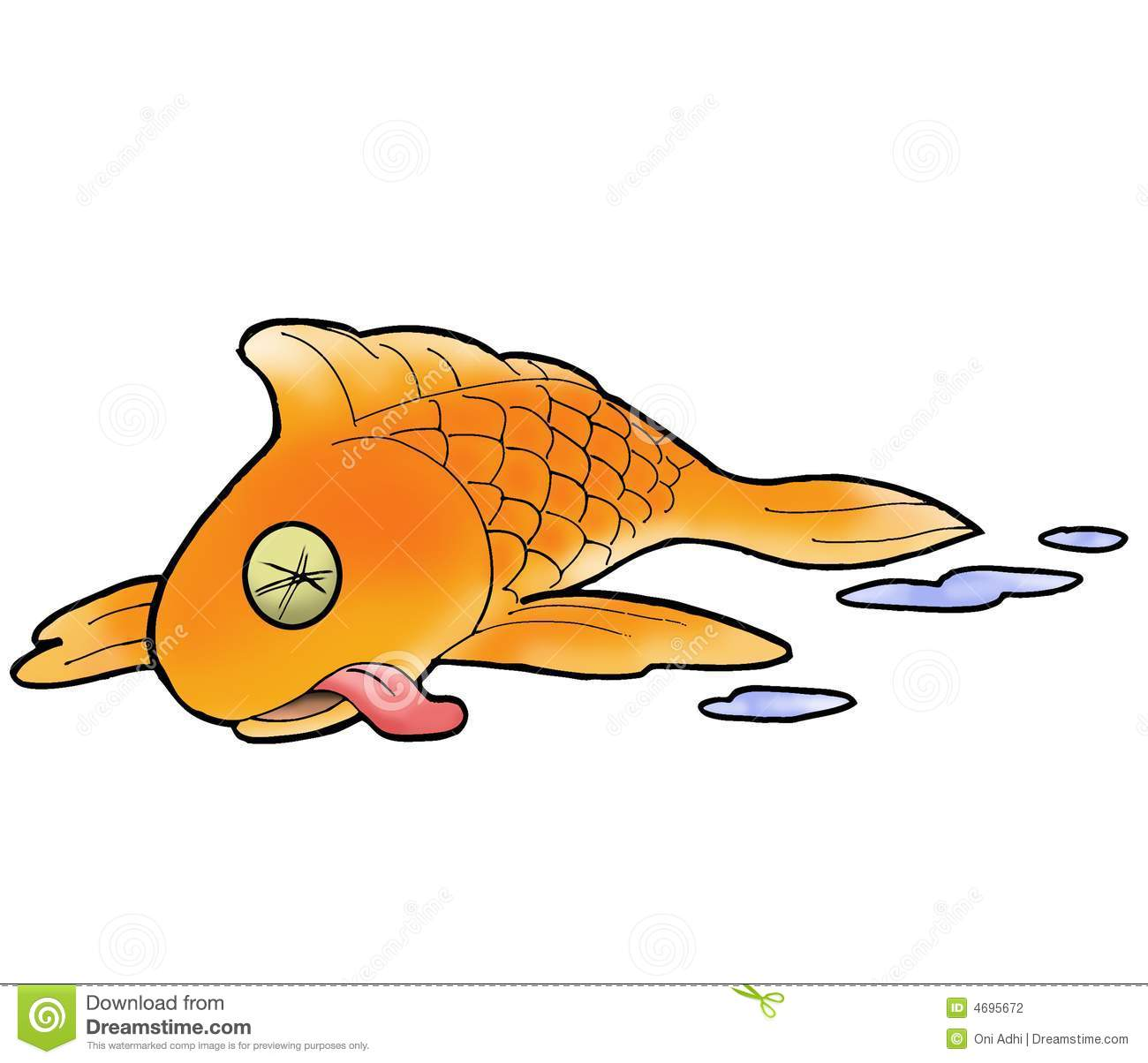 Water Dog Fish Pictures