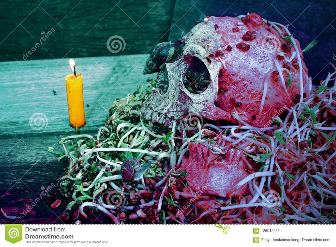 Death skull human with big snail crawl on face and rot bean sprouts