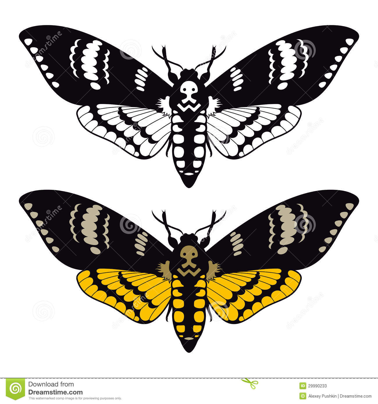 Grunge Stain Collection: Deaths Head Hawk Moth Stock Vector. Illustration Of