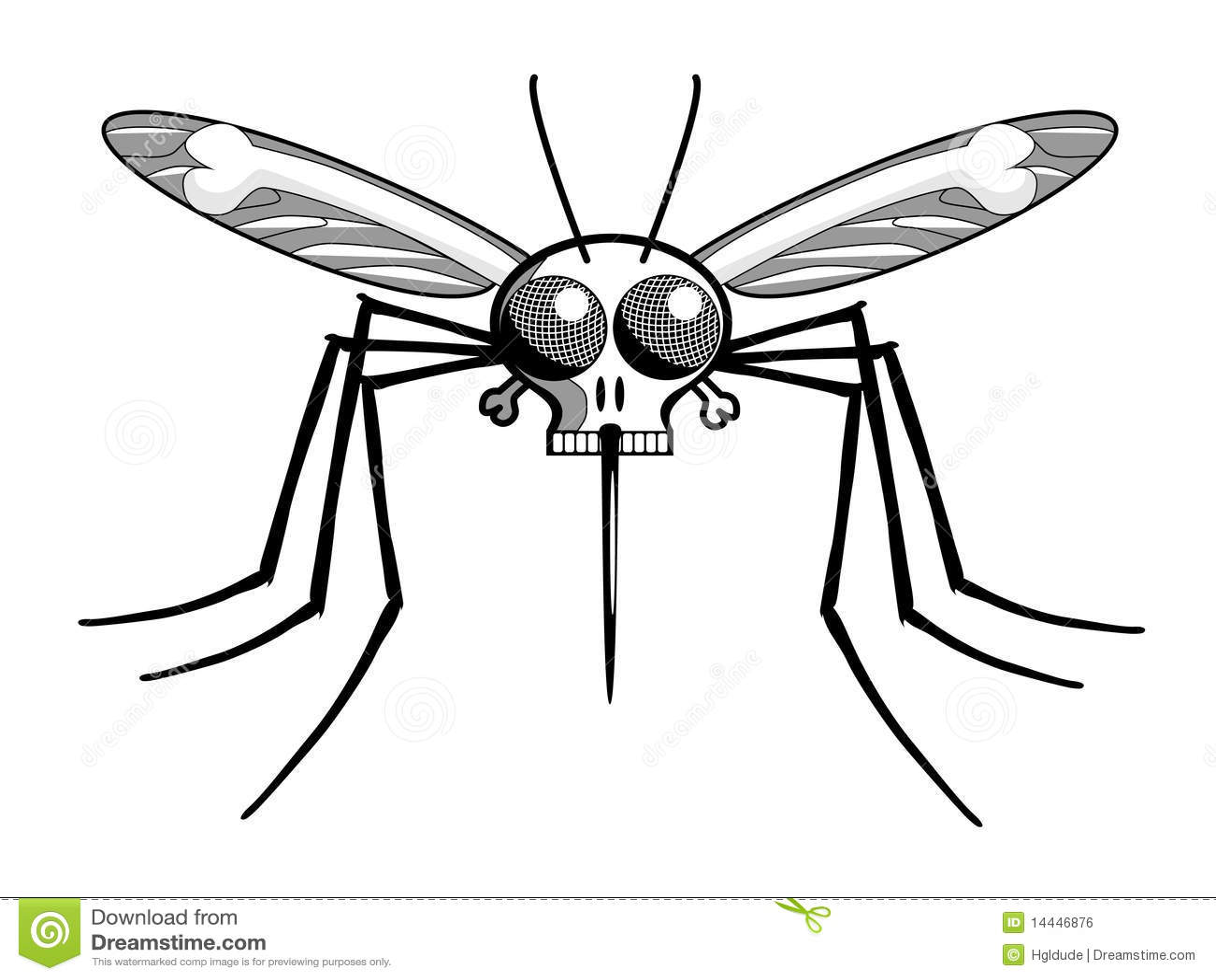 Deaths head malaria mosquito