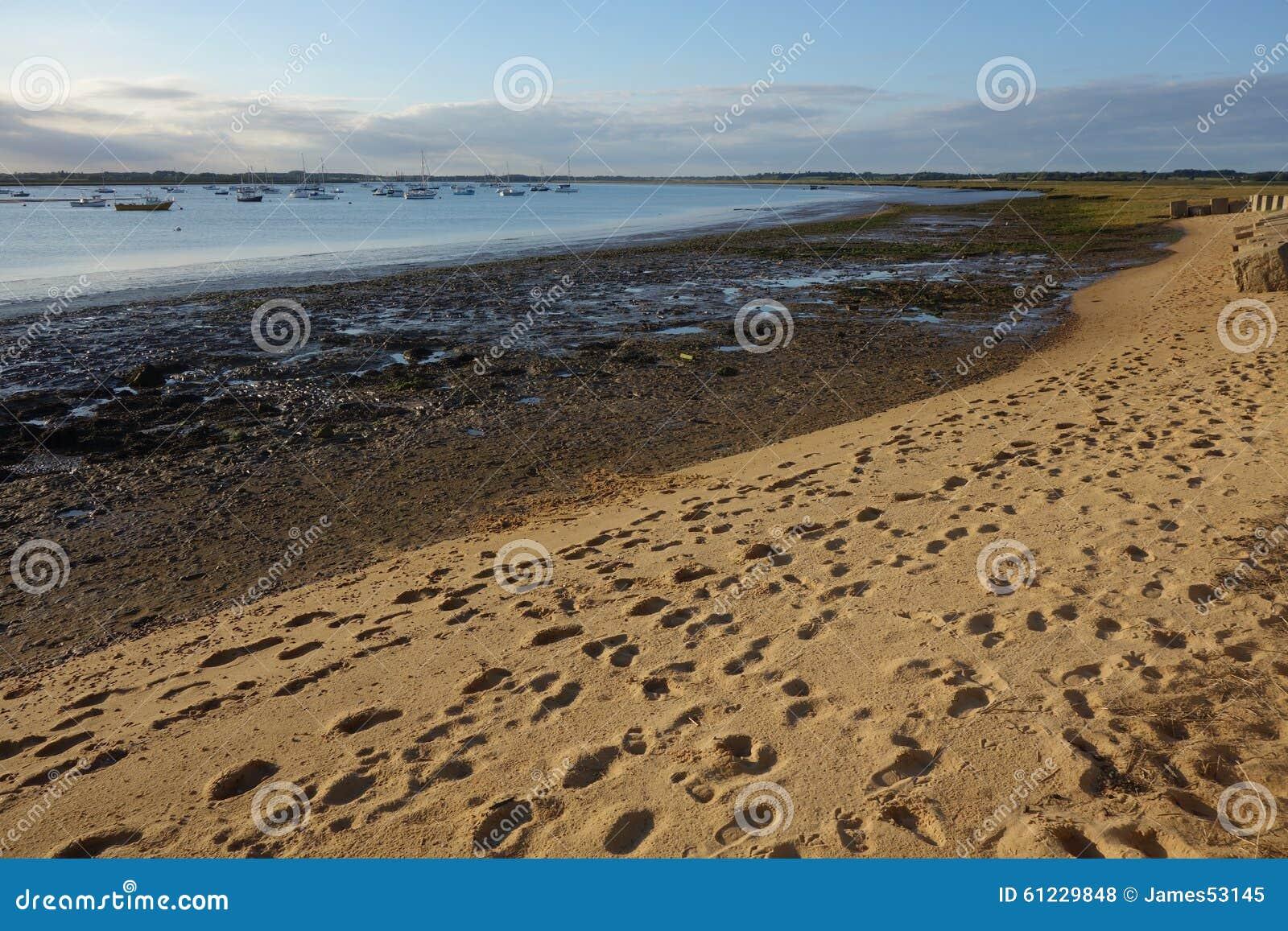 Debenestuarium Mudflats