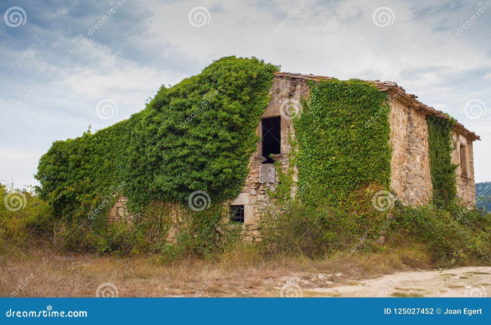 Decadência rural abandonada da casa dos fazendeiros