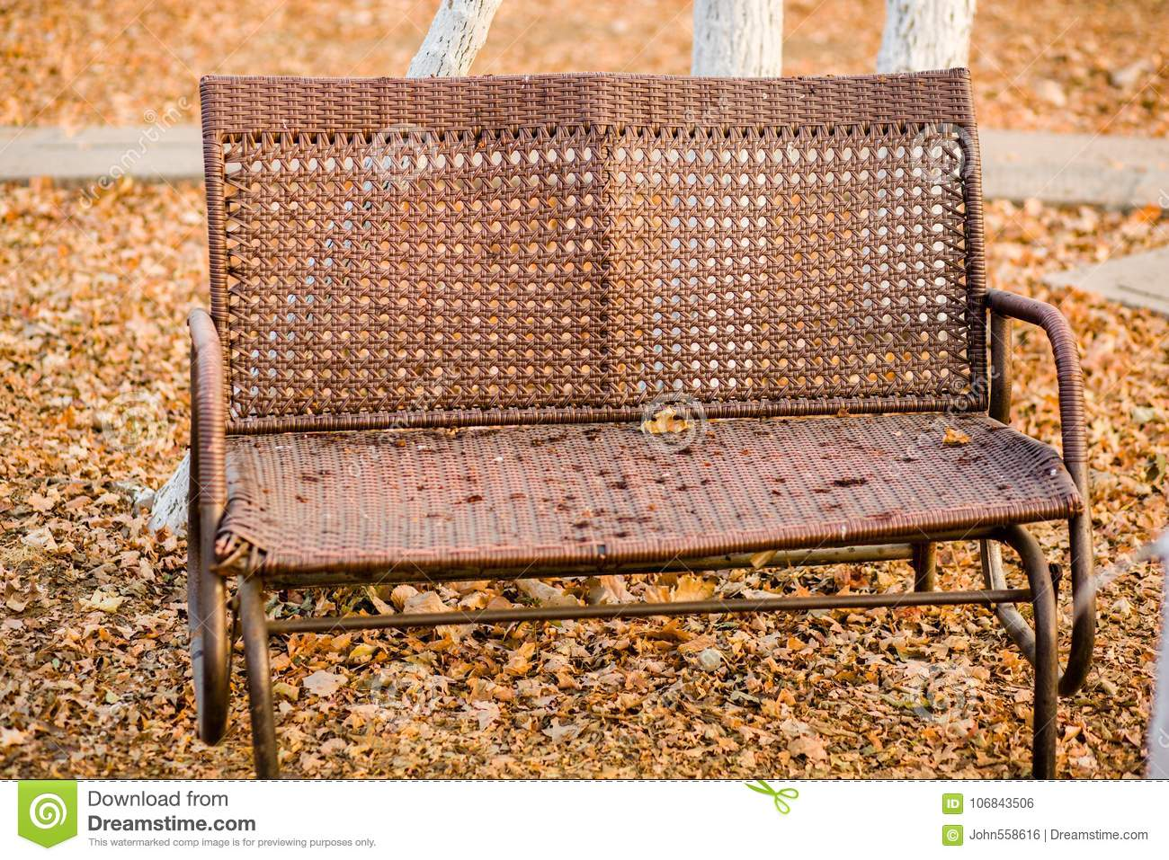 Tremendous Deciduous Chair Stock Photo Image Of Leisure Chair 106843506 Short Links Chair Design For Home Short Linksinfo