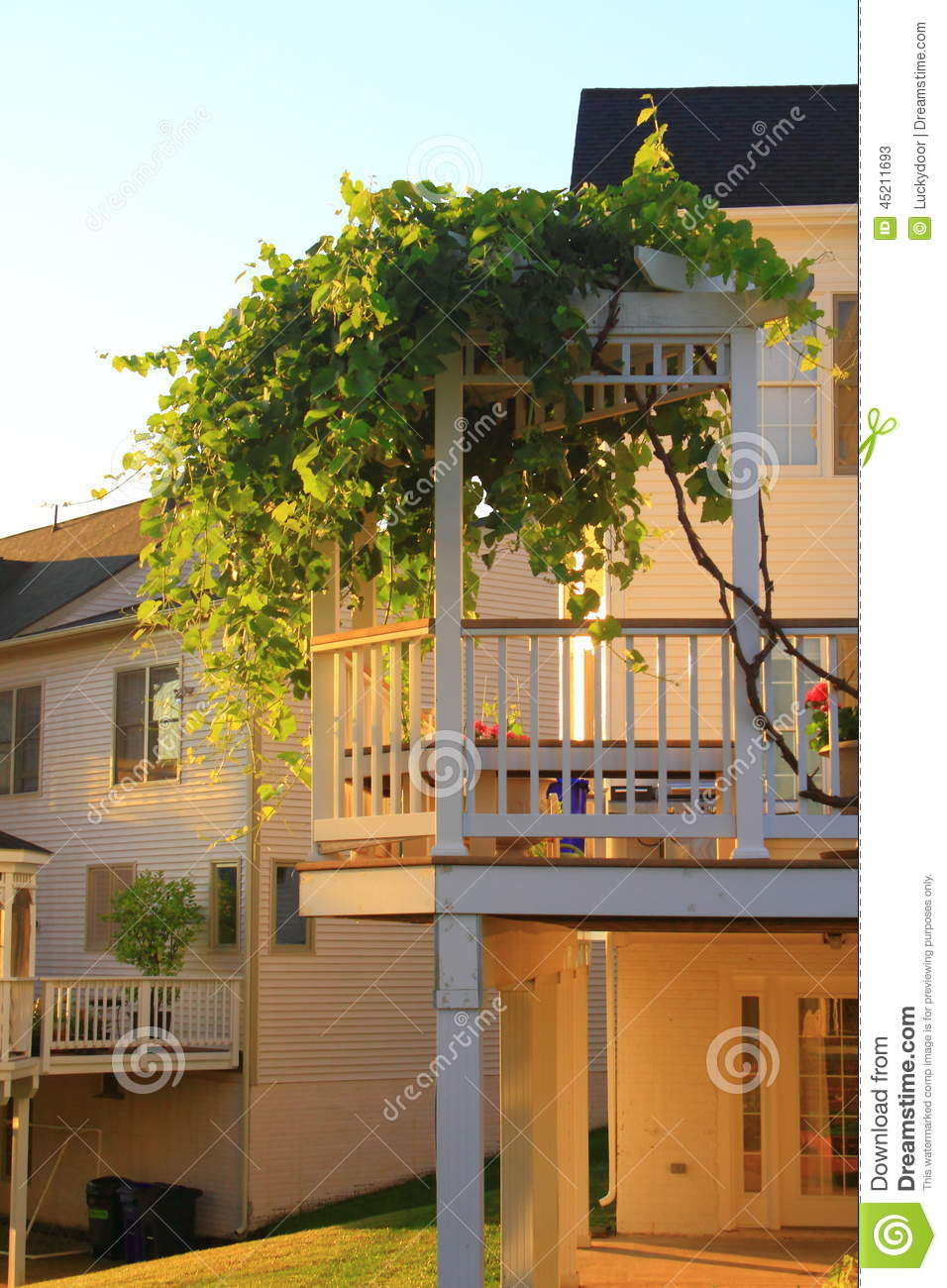 Deck With Grape Arbor Stock Image Image Of Sunshine 45211693