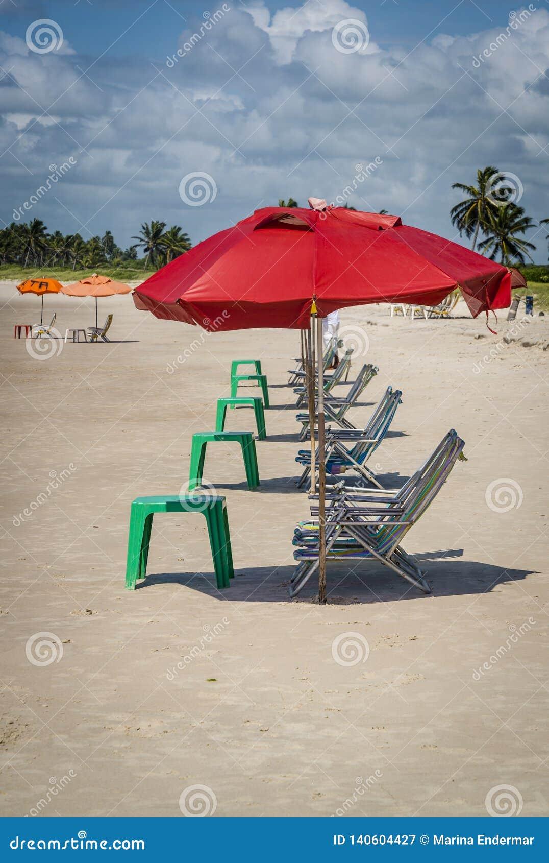 Deckchairs väntande på sunbathers, Brasilien