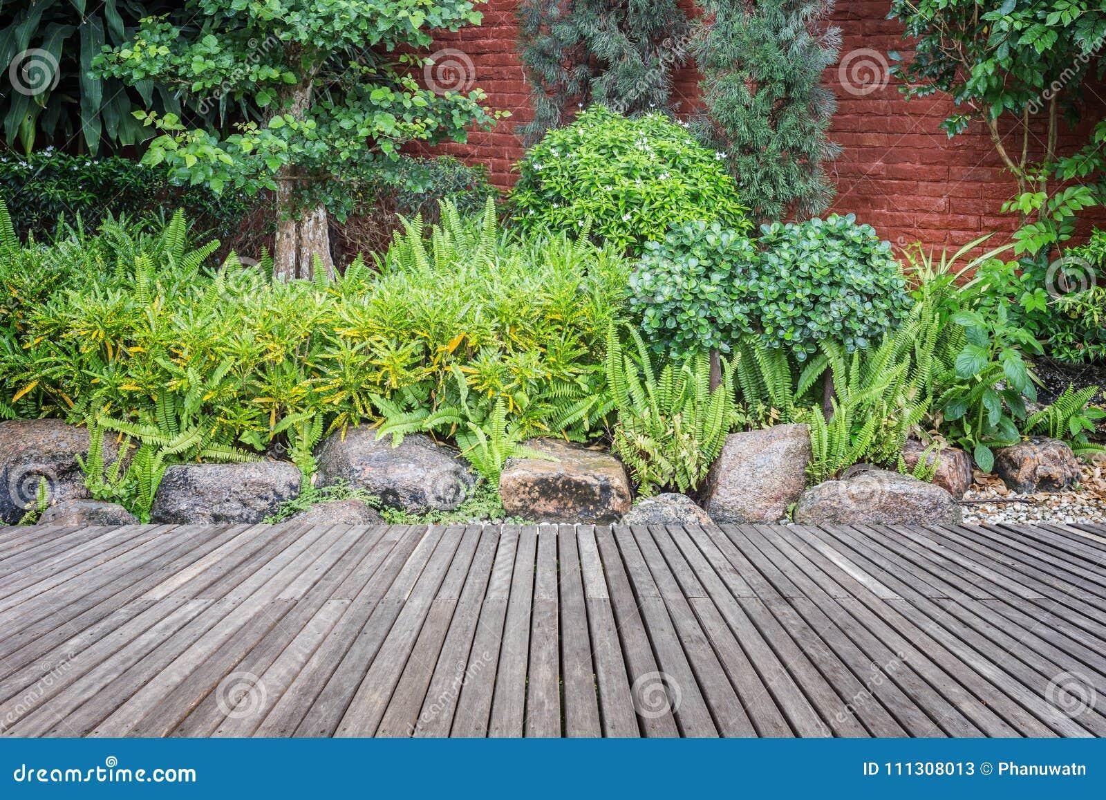 Decking Et Usine En Bois Avec Le Jardin De Mur Decoratif