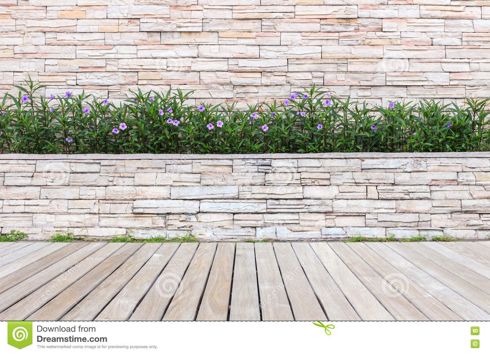 Decking o suelo y planta de madera en el jardín decorativo