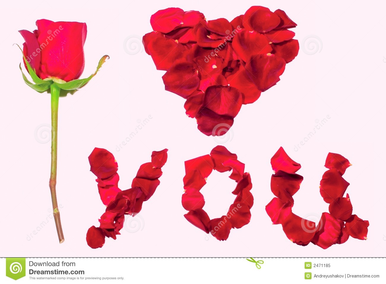 Declaration Of Love With Rose Stock Image