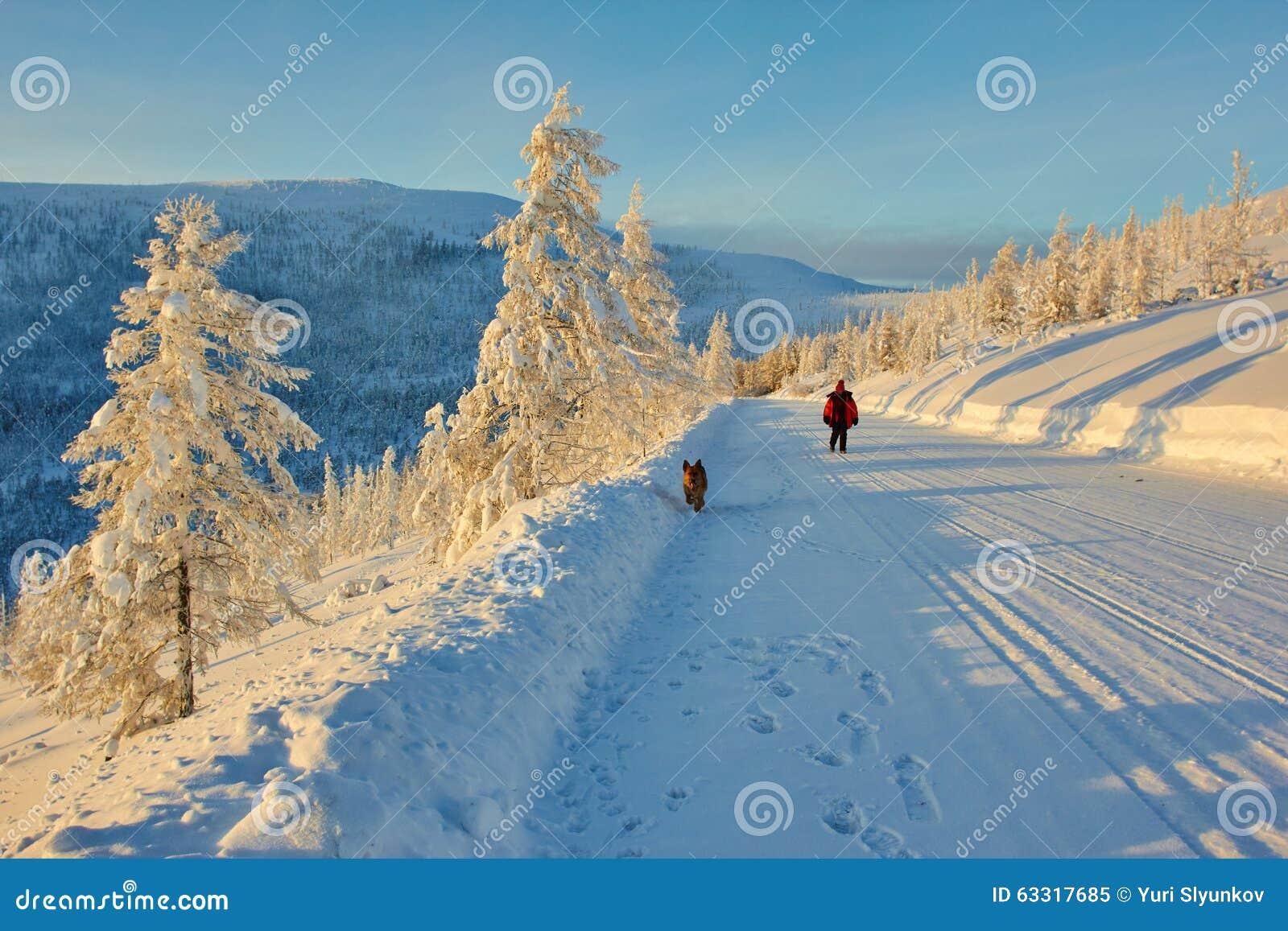 Decline on pass. Winter. Evening. Kolyma IMG_9570