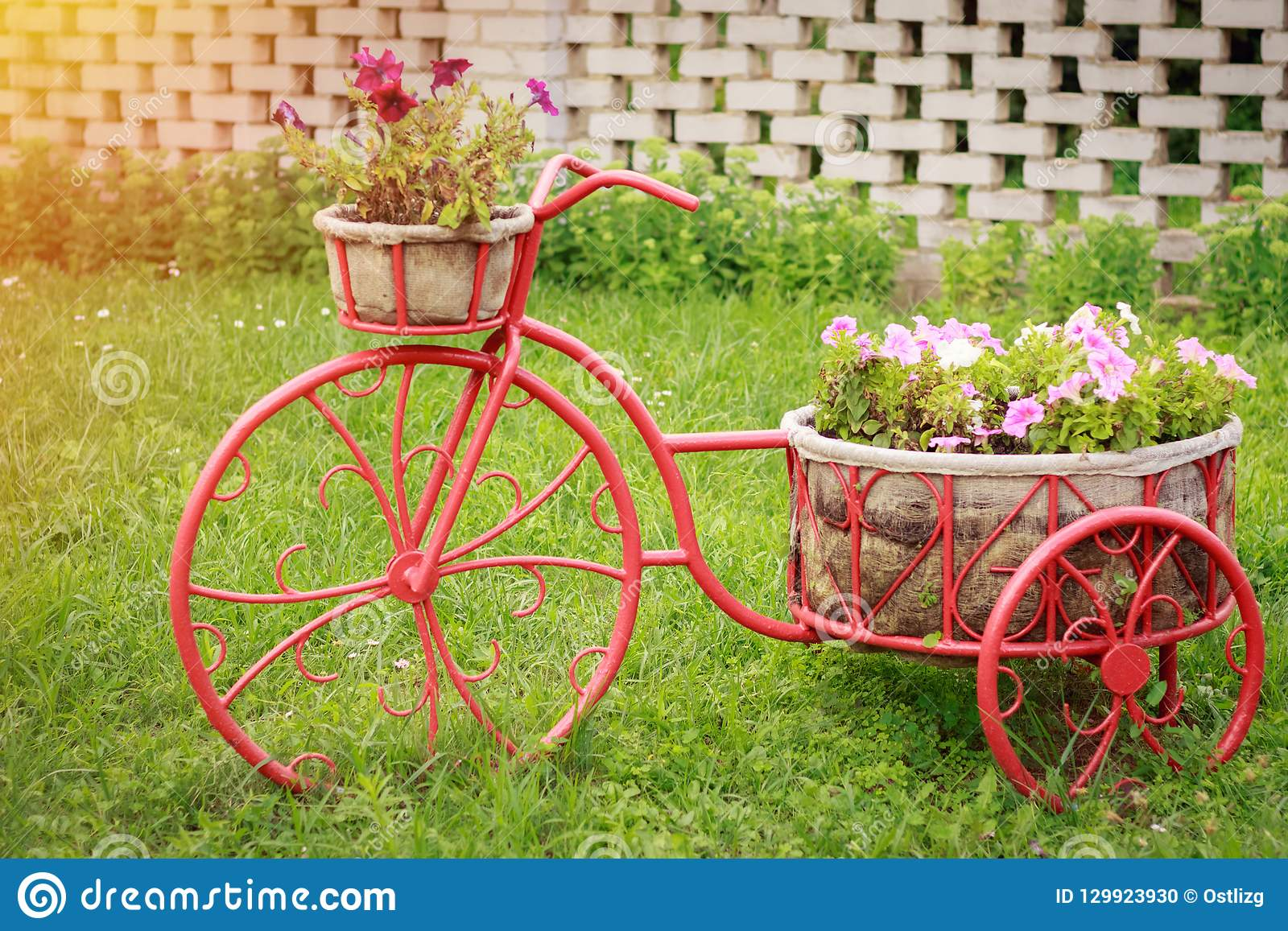 Decor For The Garden And Flowers As A Bicycle Stock Photo - Image