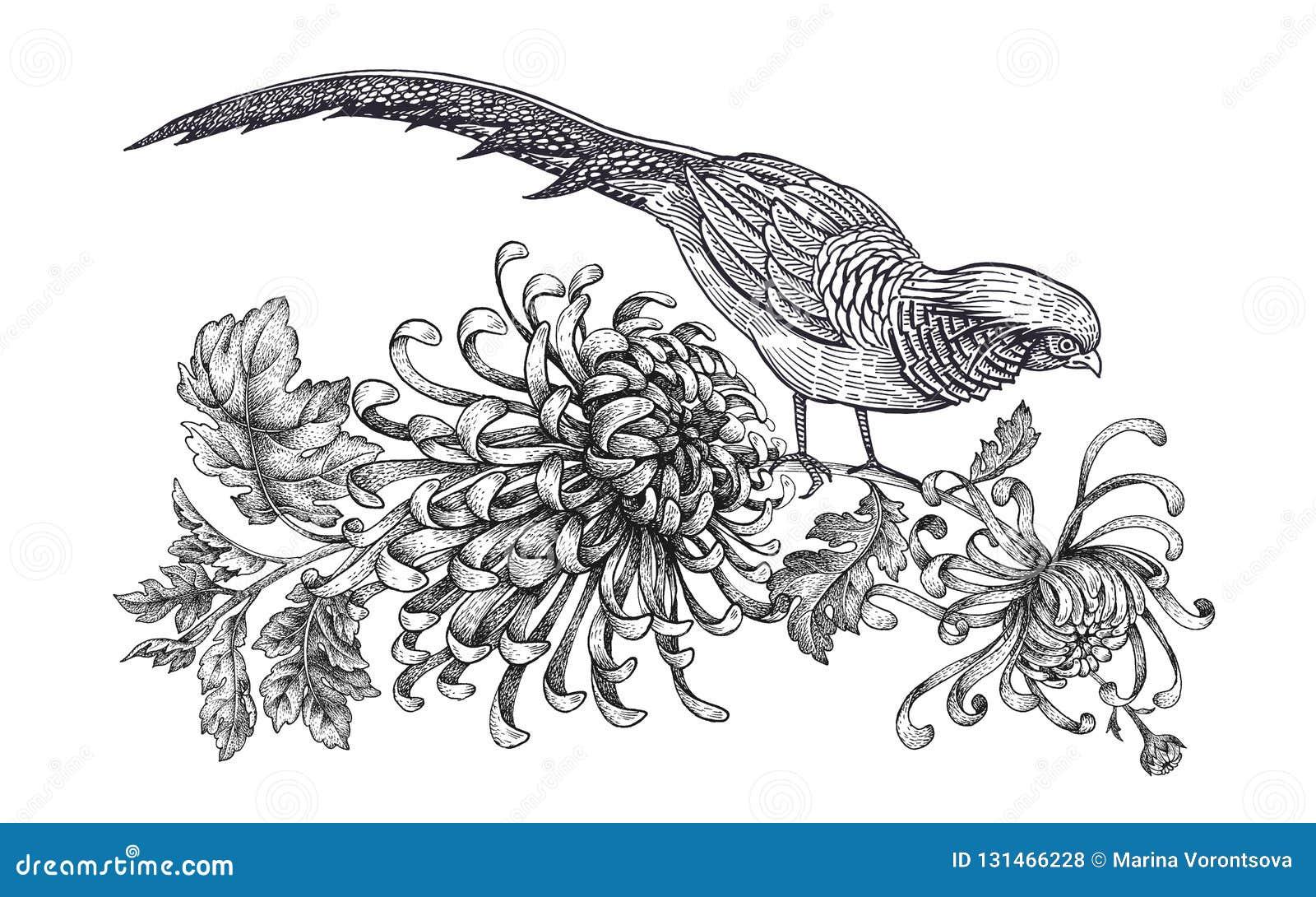 Decoracao Com Passaro E Flores Faisao Realistico E Crisantemo Do
