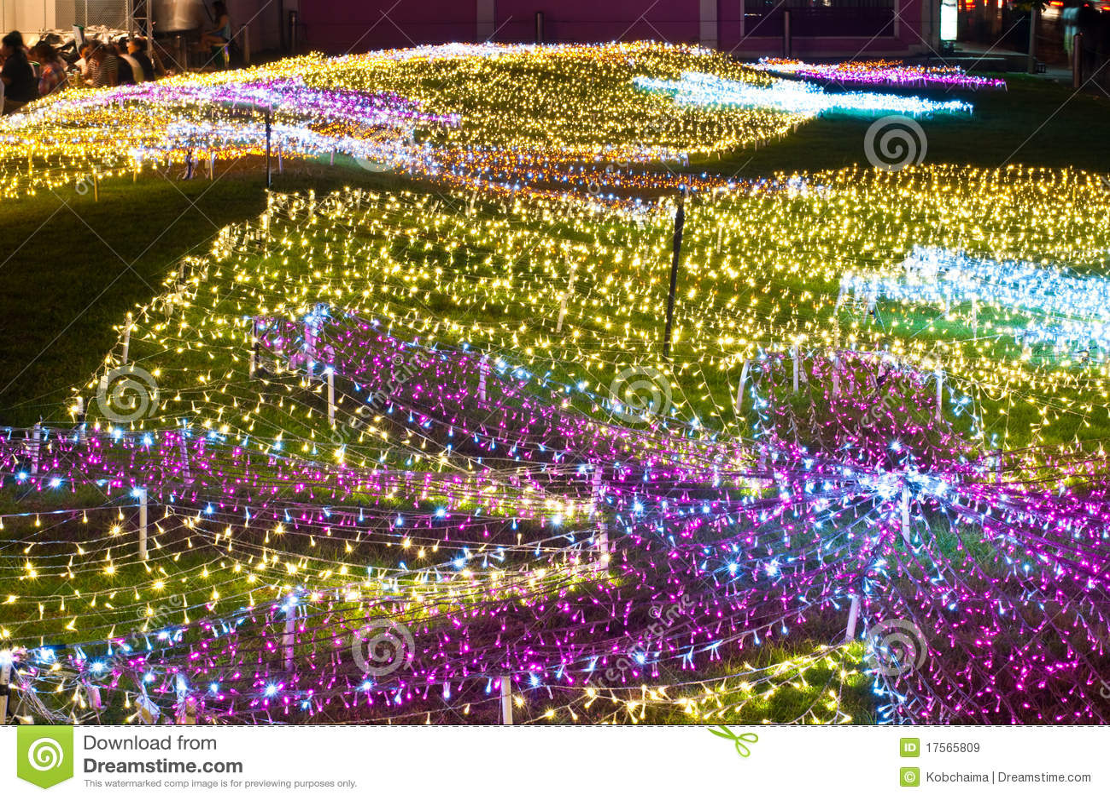decoracao para lampadas : decoracao para lampadas:Decoração de lâmpadas pequenas no assoalho da grama, Tailândia.