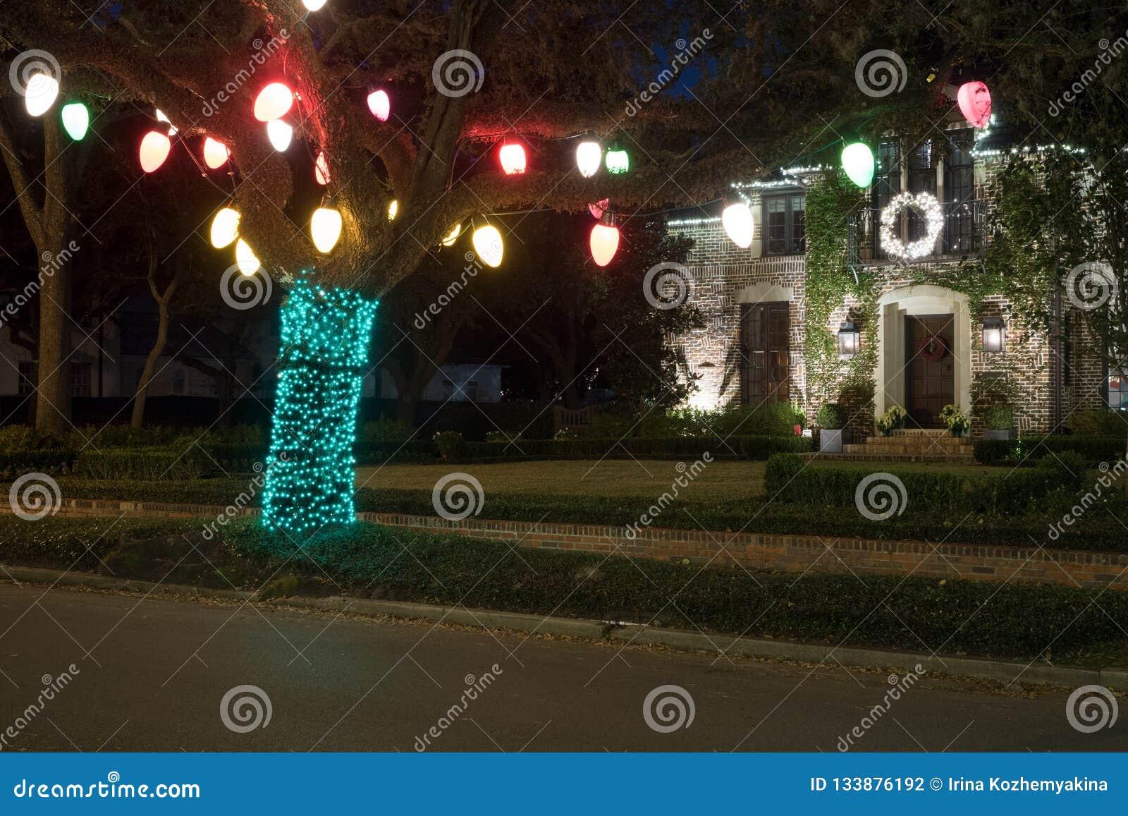 Decoração do Natal na árvore inverno, noite, Houston, Texas, E.U.