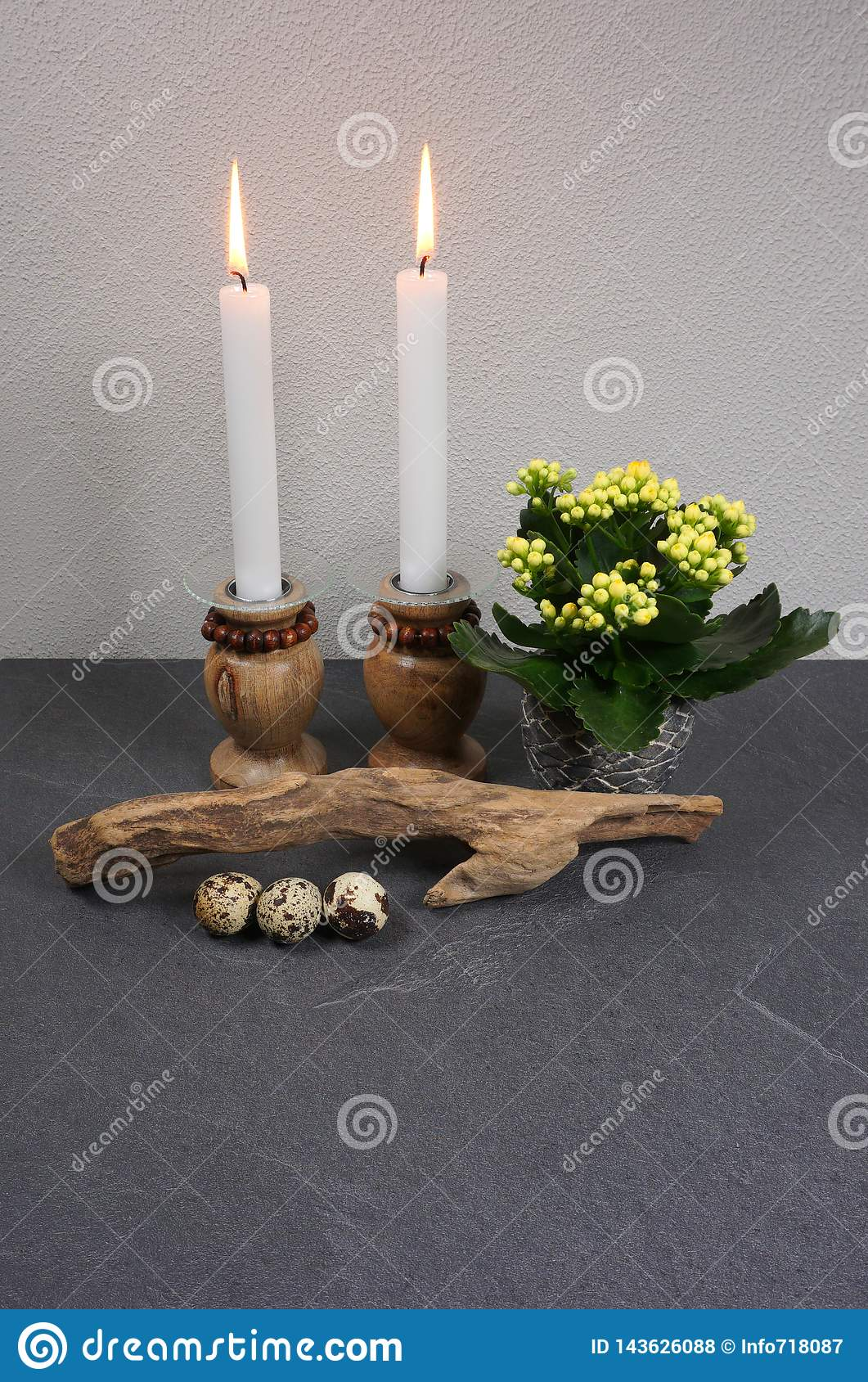 Decoração para o ambiente da casa com o blossfeldiana do kalanchoe da vela e madeira lançada à costa no fundo de madeira cinzento