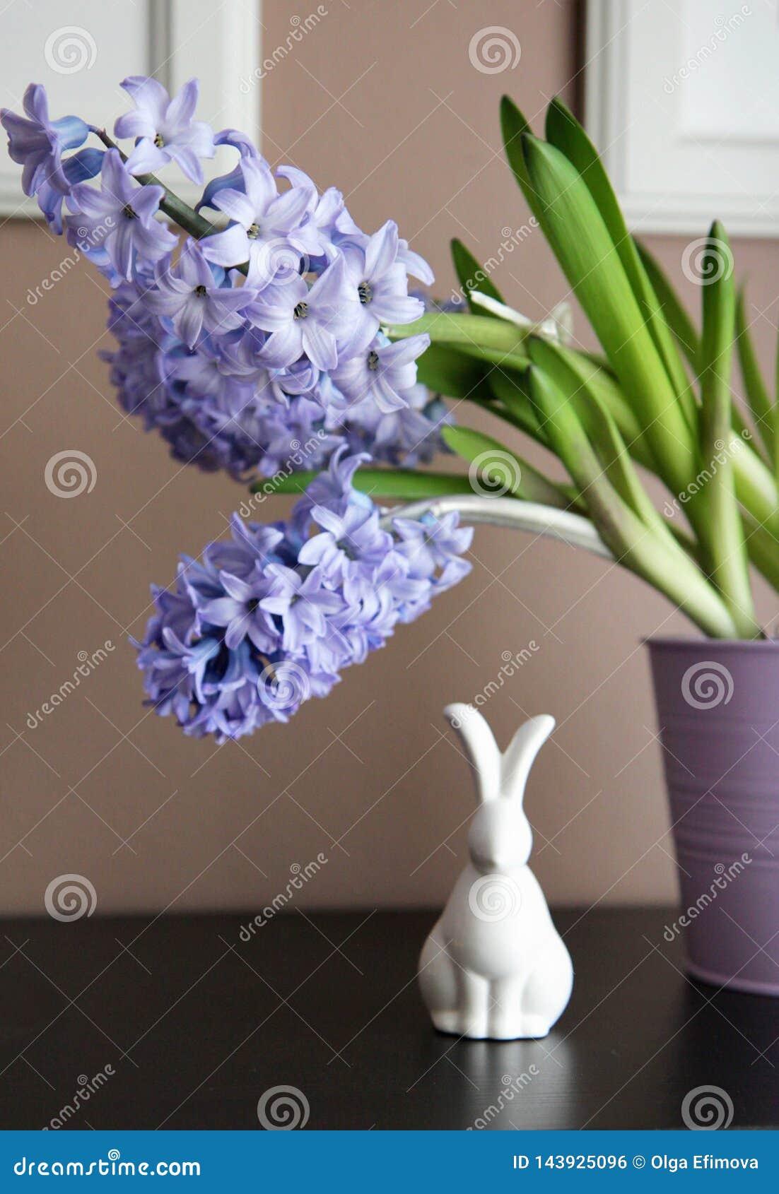 Decoração simples, moderna da Páscoa com bulbos do jacinto, e cerâmica minimalista