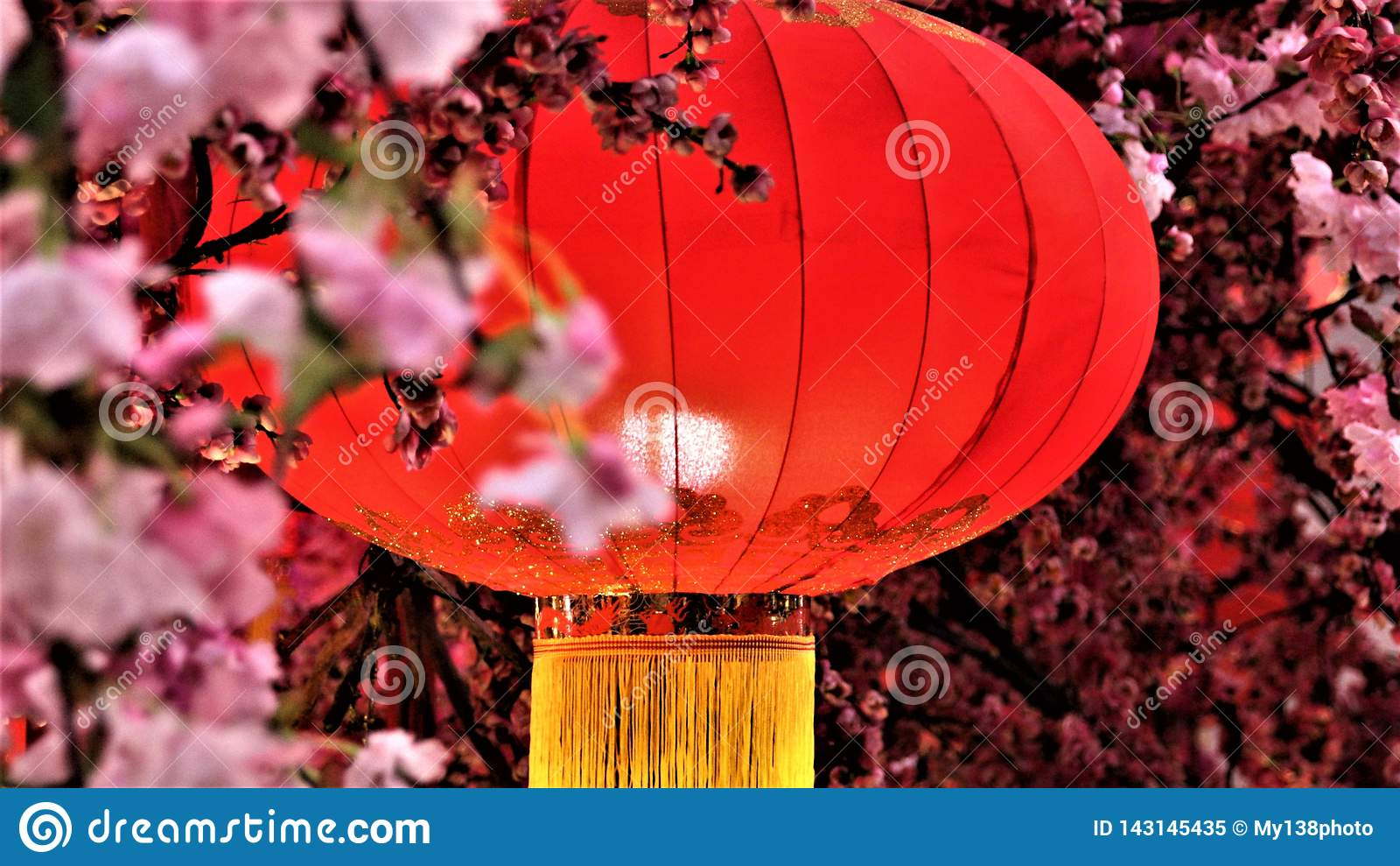 Decoración china del Año Nuevo en alameda de compras
