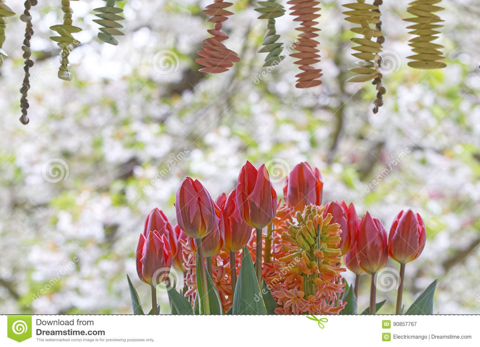 Decoración del tulipán