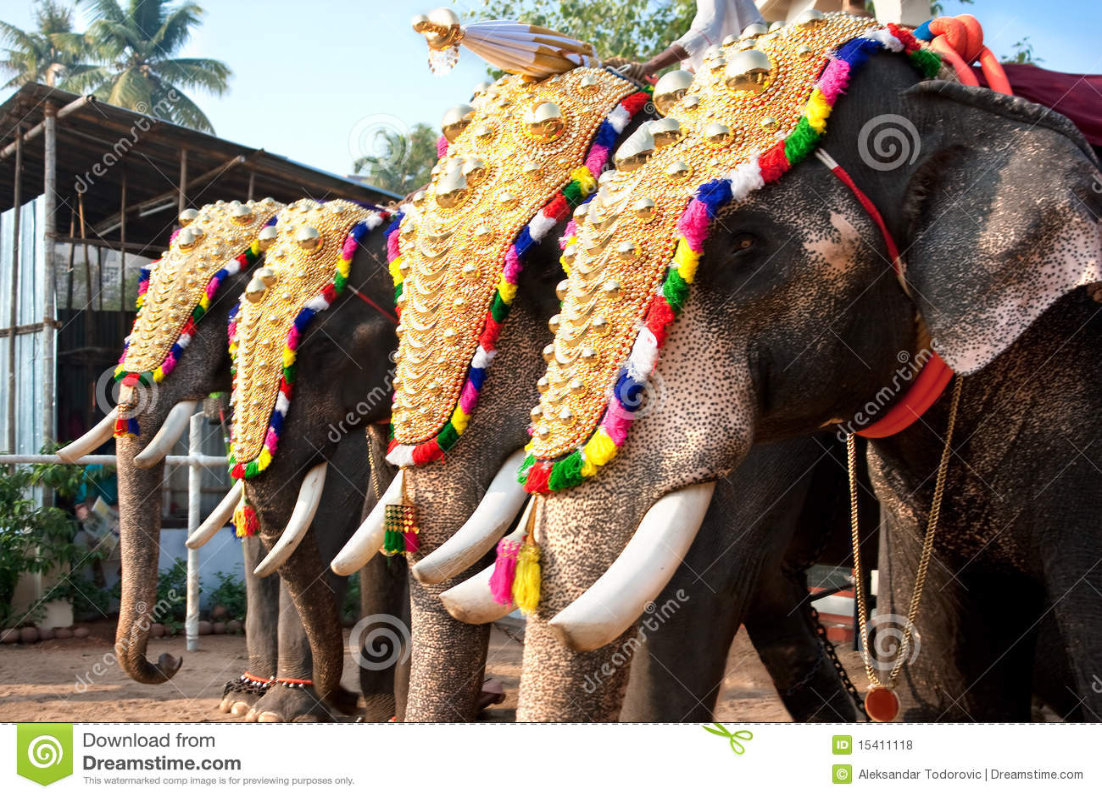 Decorated Elephants For Parade Stock Photo - Image: 15411118