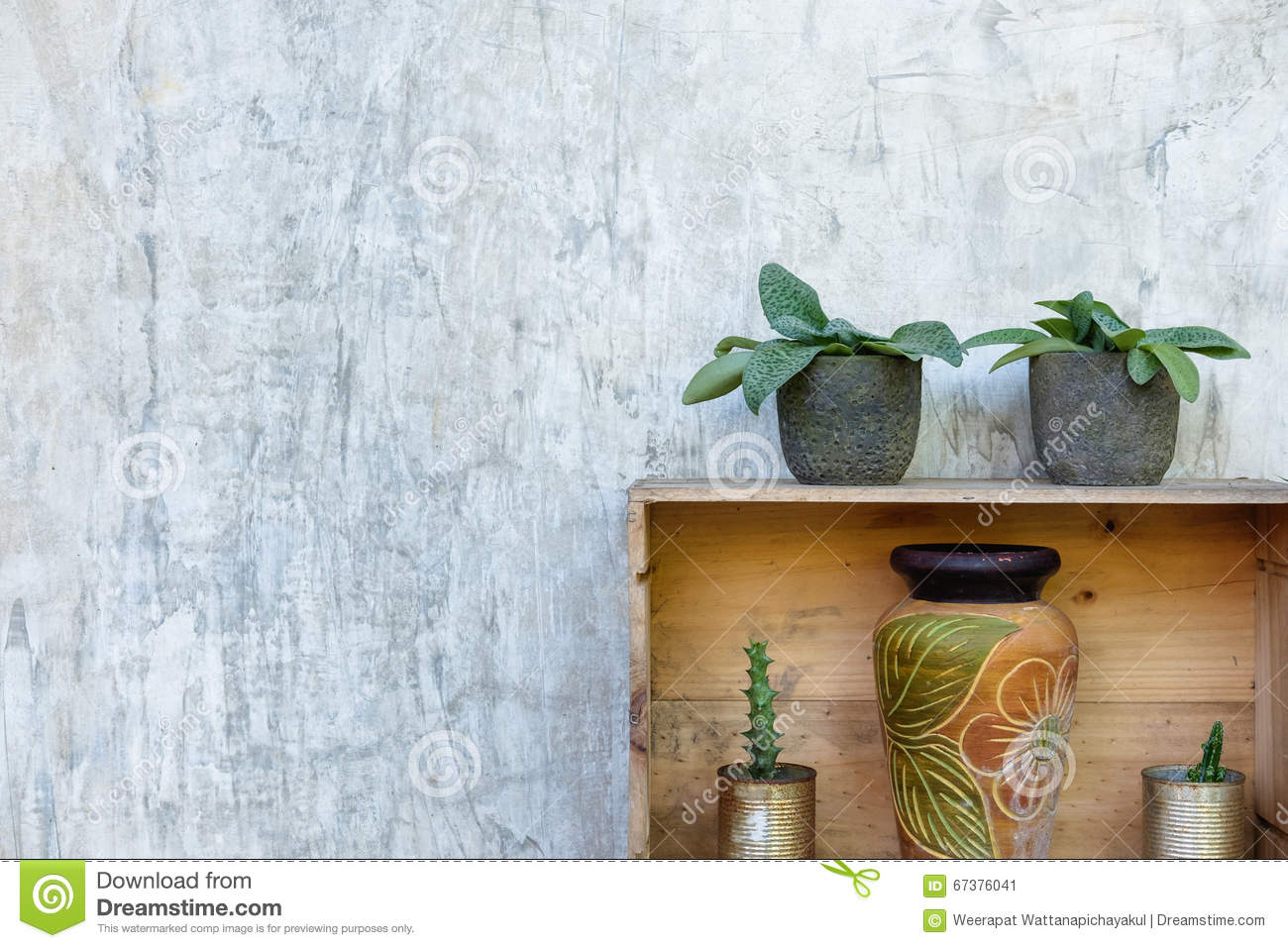 Decorated plants stock photo image 67376041 for Classic house plants