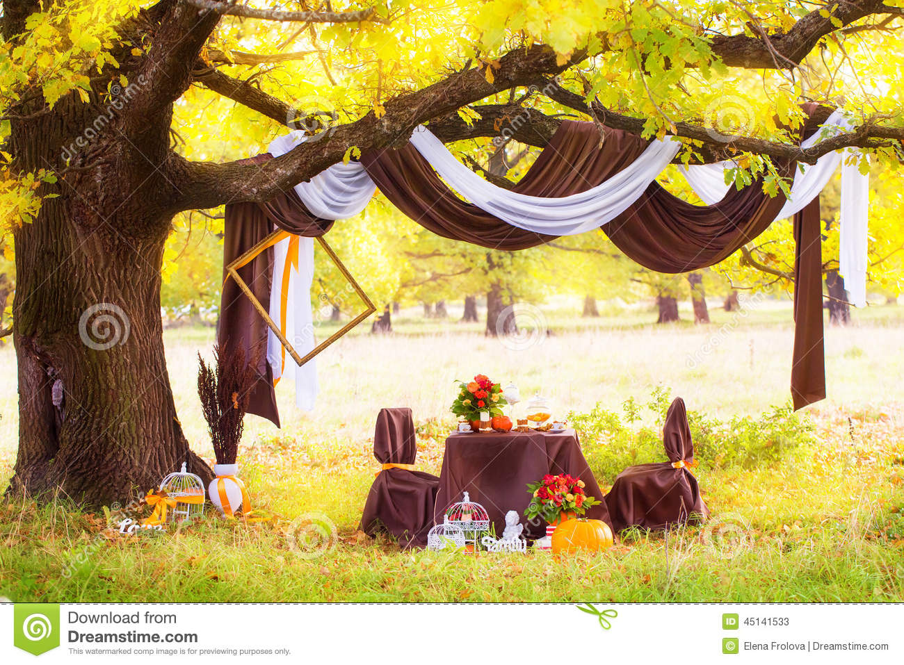 Decorated Table For A Romantic Dinner Under The Oak In ...