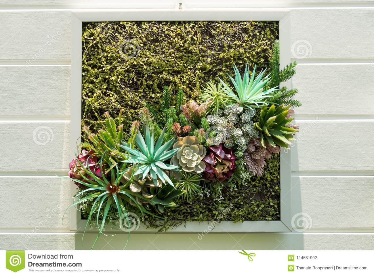 Decorated Wall Vertical Garden, Background. Stock Photo - Image of ...