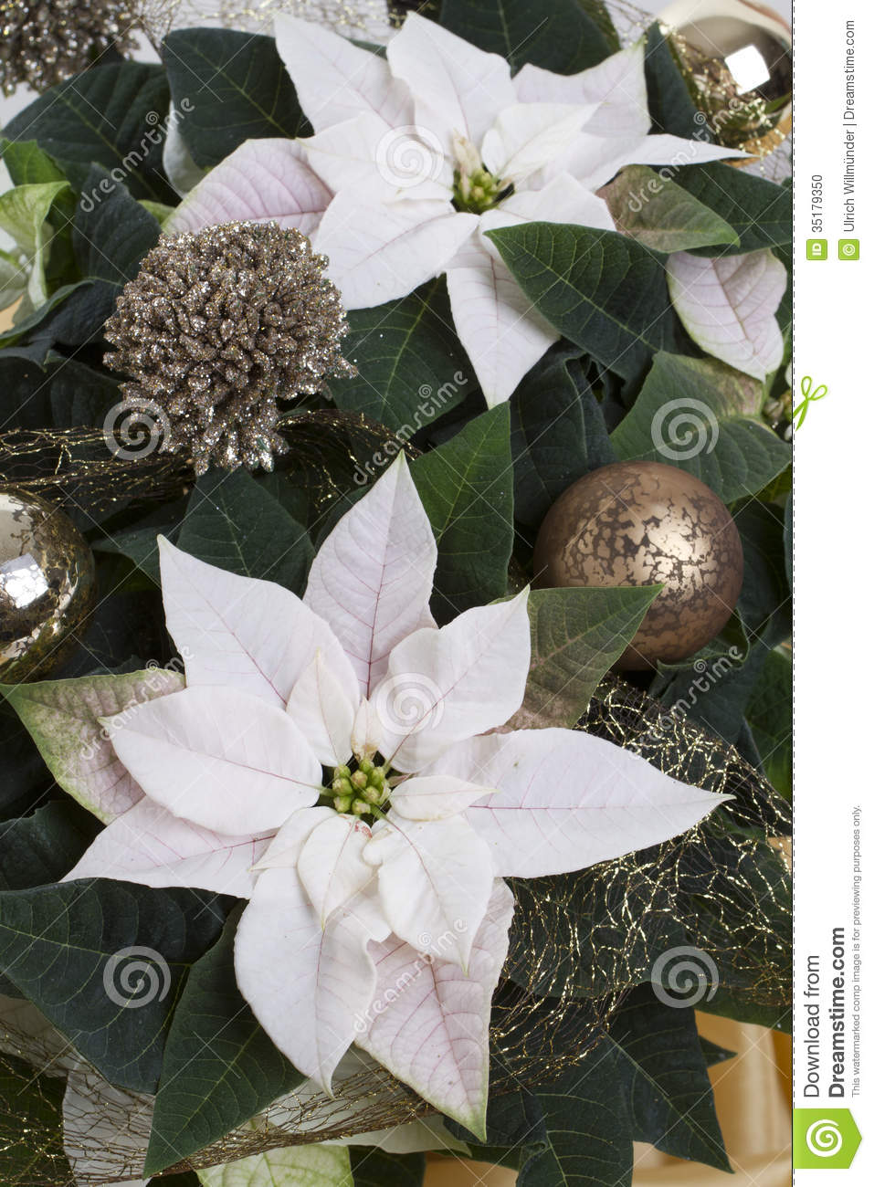 Decorated winter rose stock photo image 35179350 for White christmas baubles