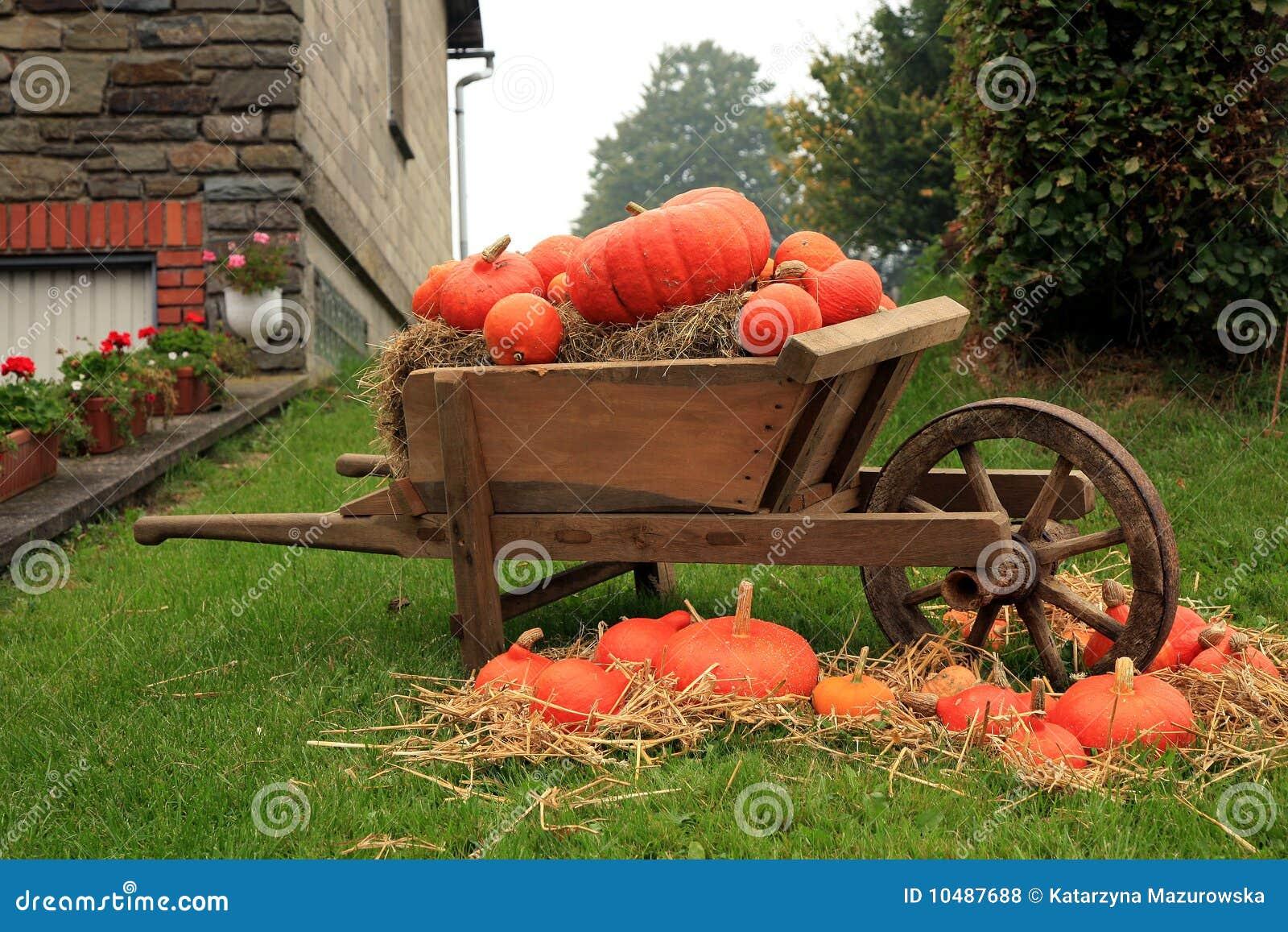 Decoratie van de pompoen stock foto afbeelding bestaande uit landbouw 10487688 - Foto van decoratie ...