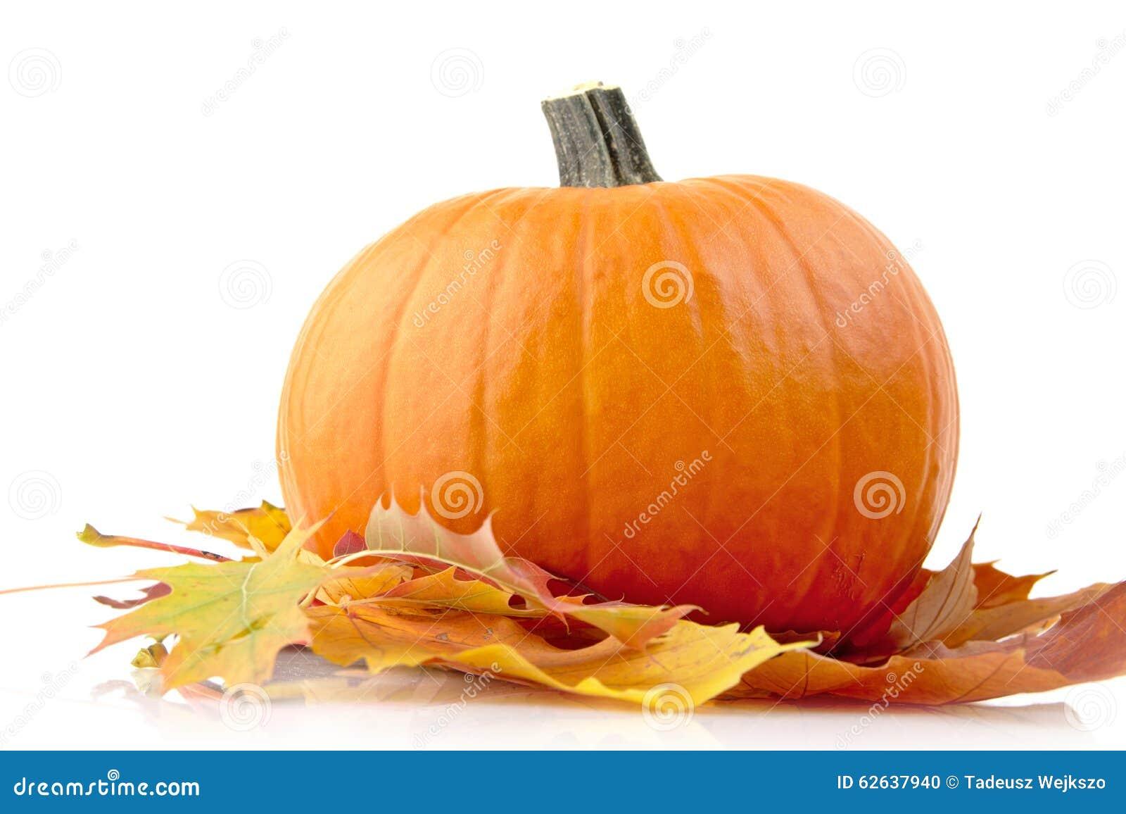 Decoratie van pompoen met de herfstbladeren voor thanksgiving day op wit stock foto afbeelding - Decoratie van de kamers van de meiden ...