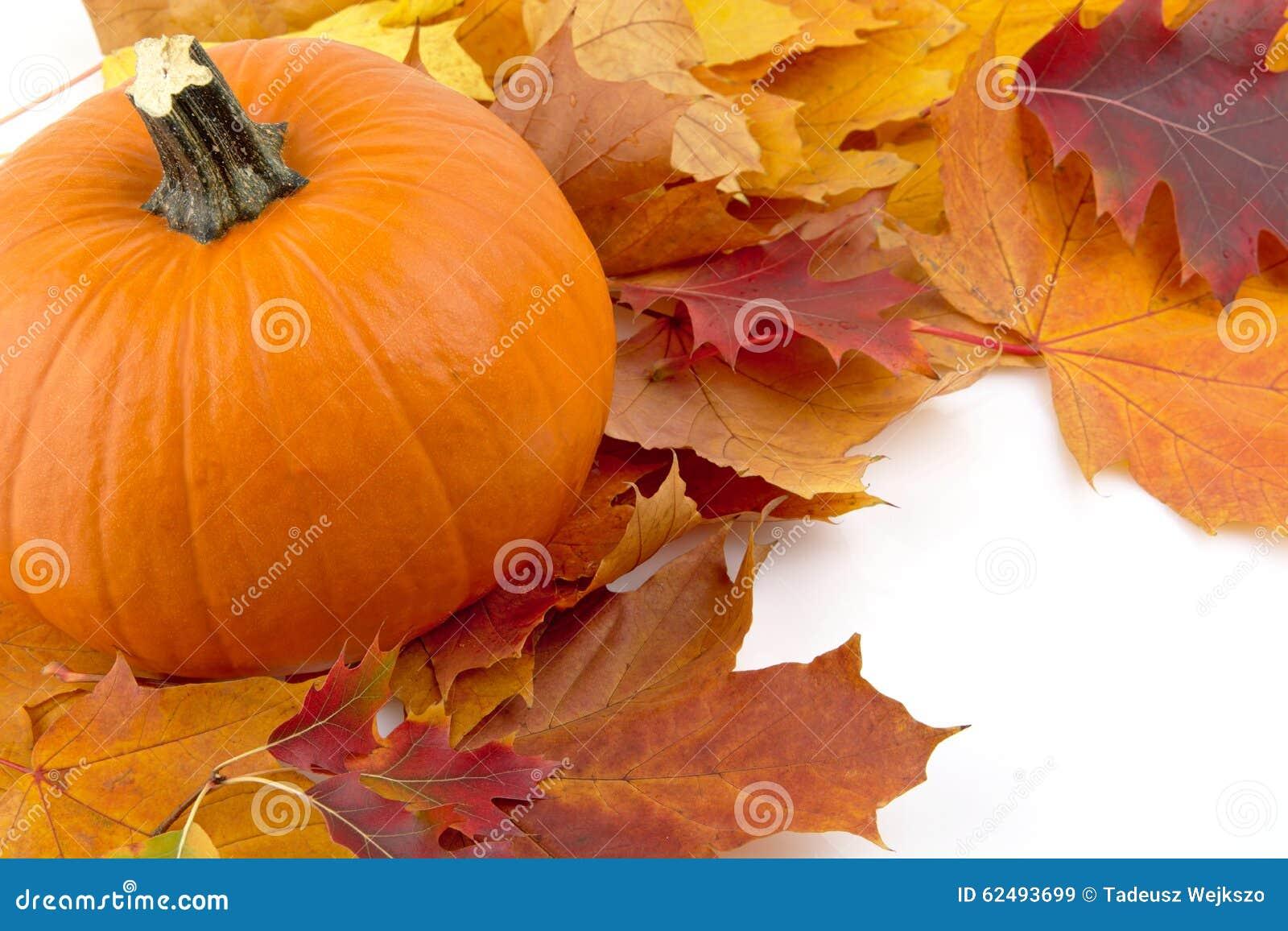 Decoratie van pompoenen met de herfstbladeren voor thanksgiving day o stock foto afbeelding - Decoratie van de kamers van de meiden ...