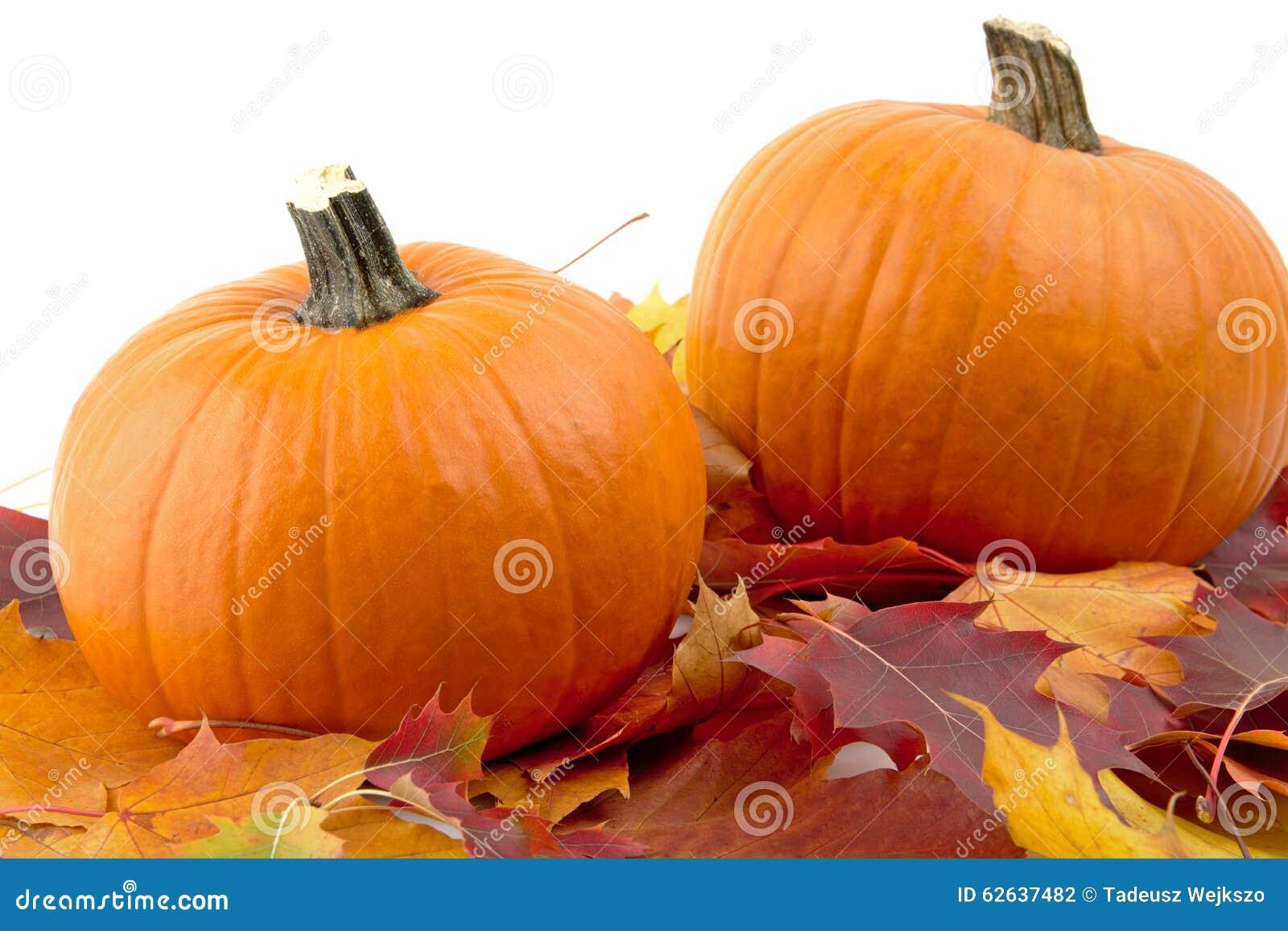 Decoratie van pompoenen met de herfstbladeren voor thanksgiving day op wit stock foto - Decoratie van de kamers van de meiden ...