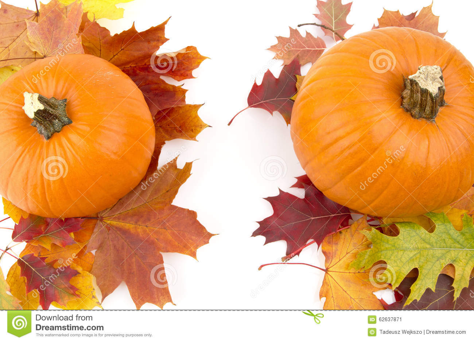 Decoratie van pompoenen met de herfstbladeren voor thanksgiving day op wit stock afbeelding - Decoratie van de kamers van de meiden ...