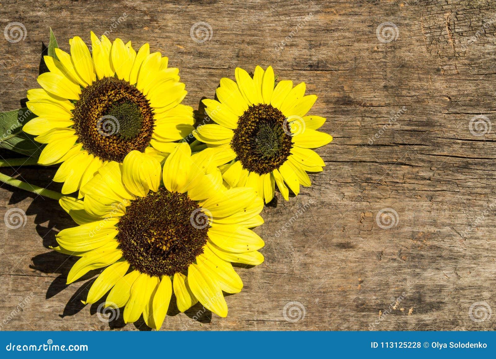 Decoratieve zonnebloemen op de houten achtergrond