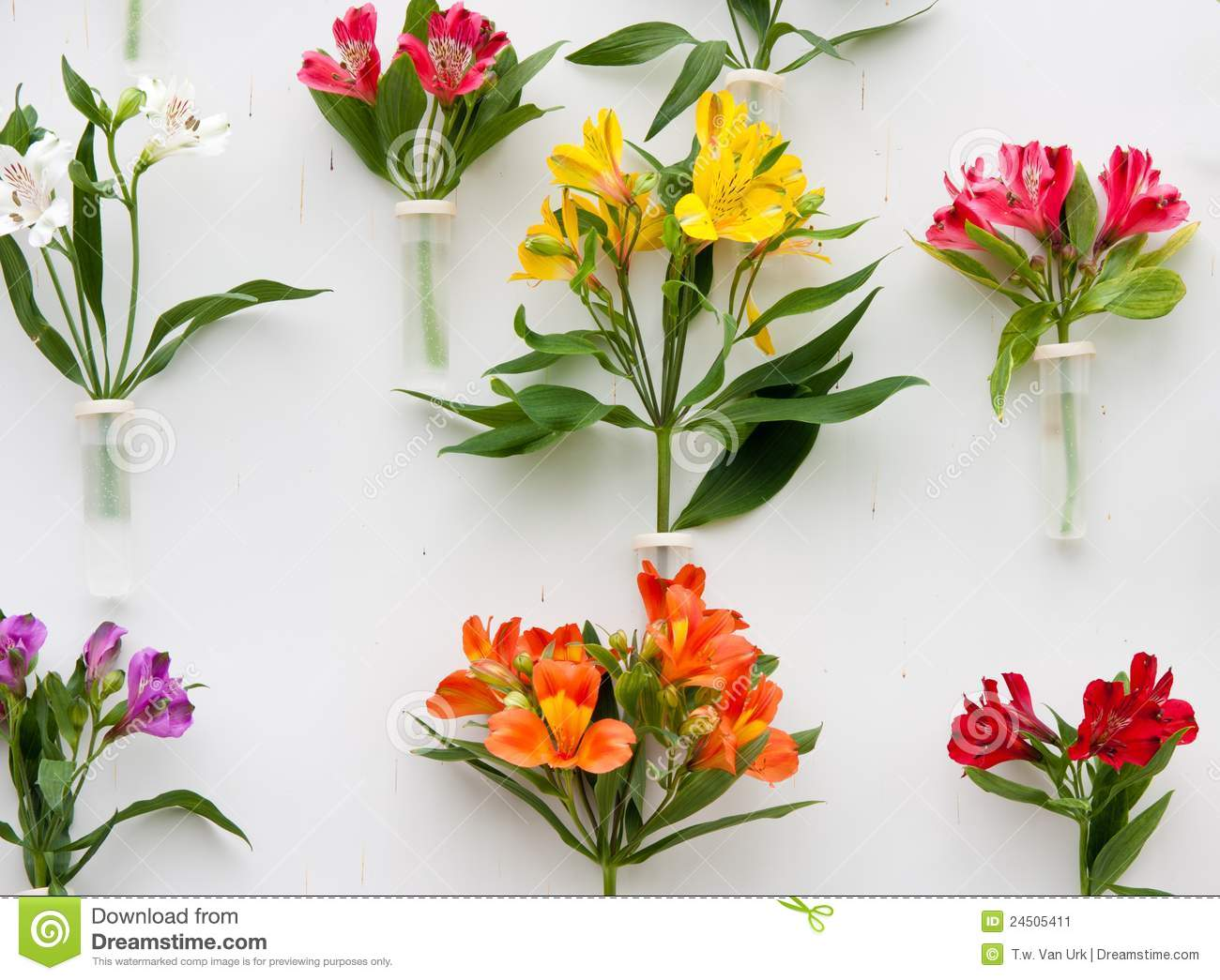 Decoration of beautiful flowers stock image image 24505411 for Decoration flowers