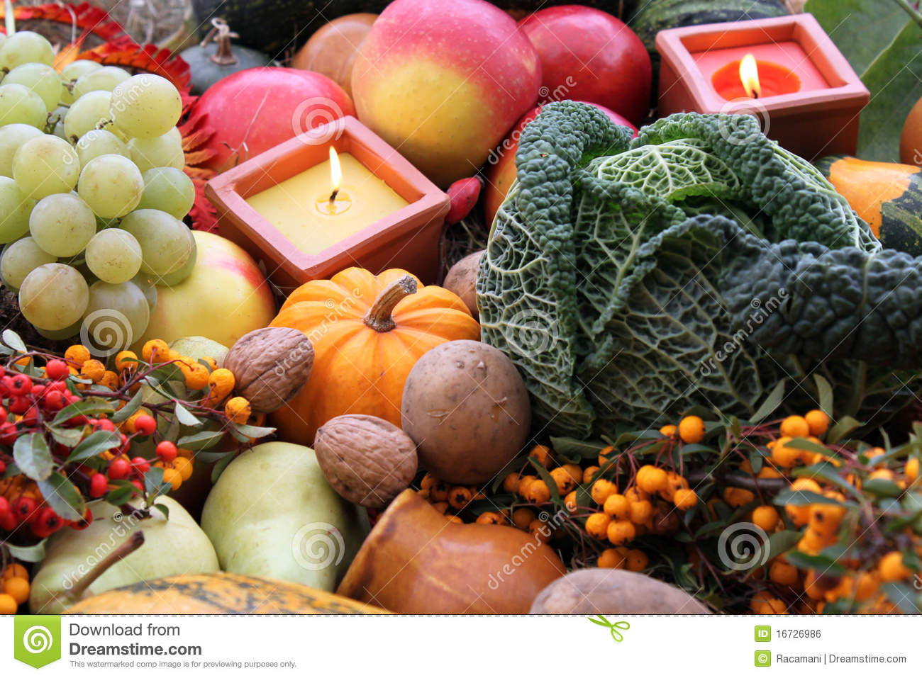 Decoration for thanksgiving with fruit and vegetab stock